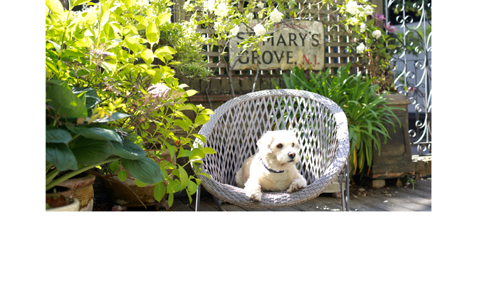 Garden Furniture & Furnishing  - Take a break from all that digging, pick up a Pimms & relax
