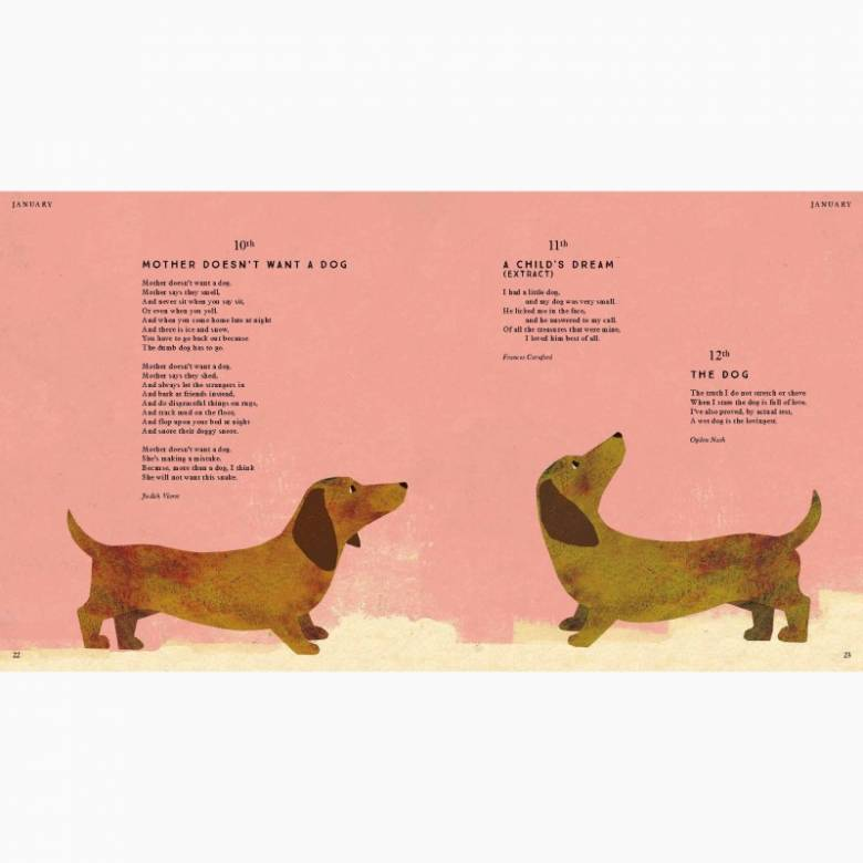 Tiger, Tiger, Burning Bright! (Animal Poems) - Hardback Book