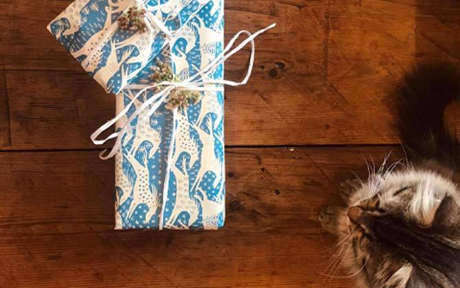 Gift Vouchers, Let Them Choose... - With a Gift Voucher.