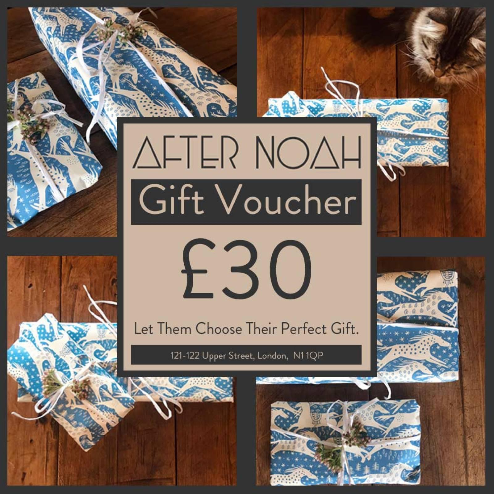 After Noah £30 Gift Voucher