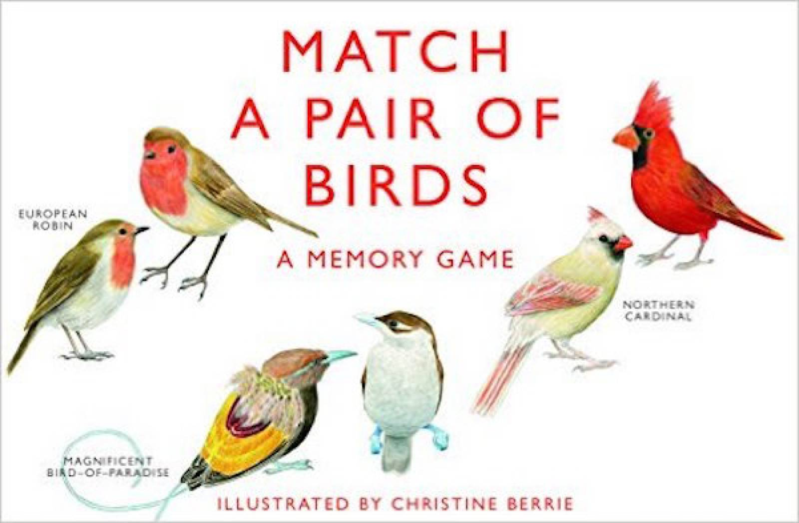 Match A Pair Of Birds Memory Game 6+ thumbnails