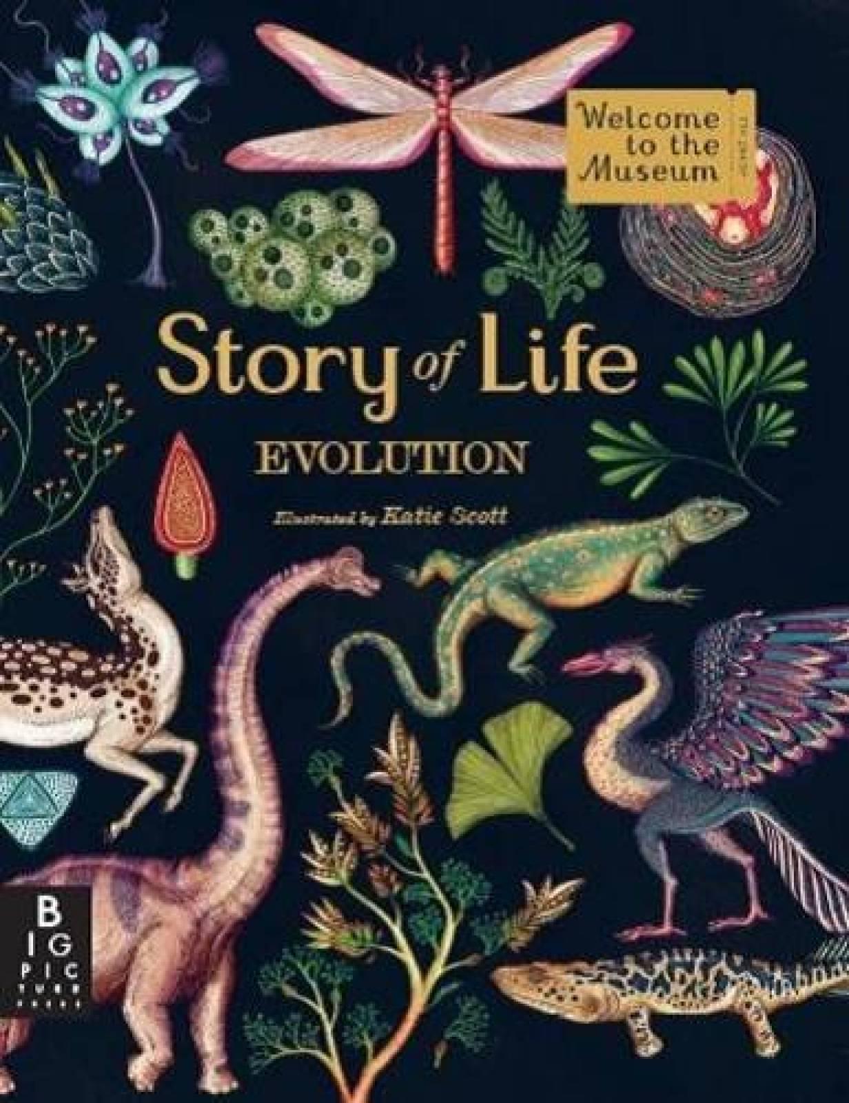 Story Of Life: Evolution Hardback Book