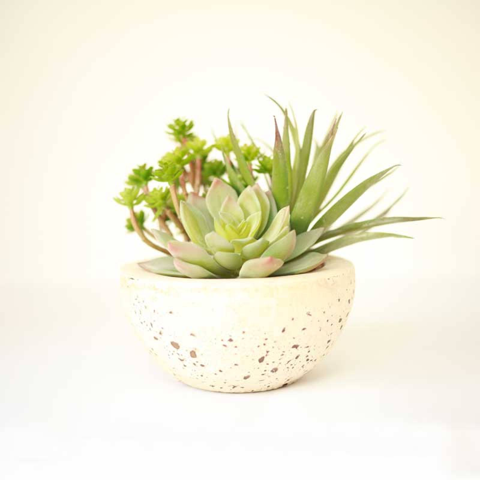 Assorted Faux Green Succulents Arranged In Grey Cement Bowl thumbnails
