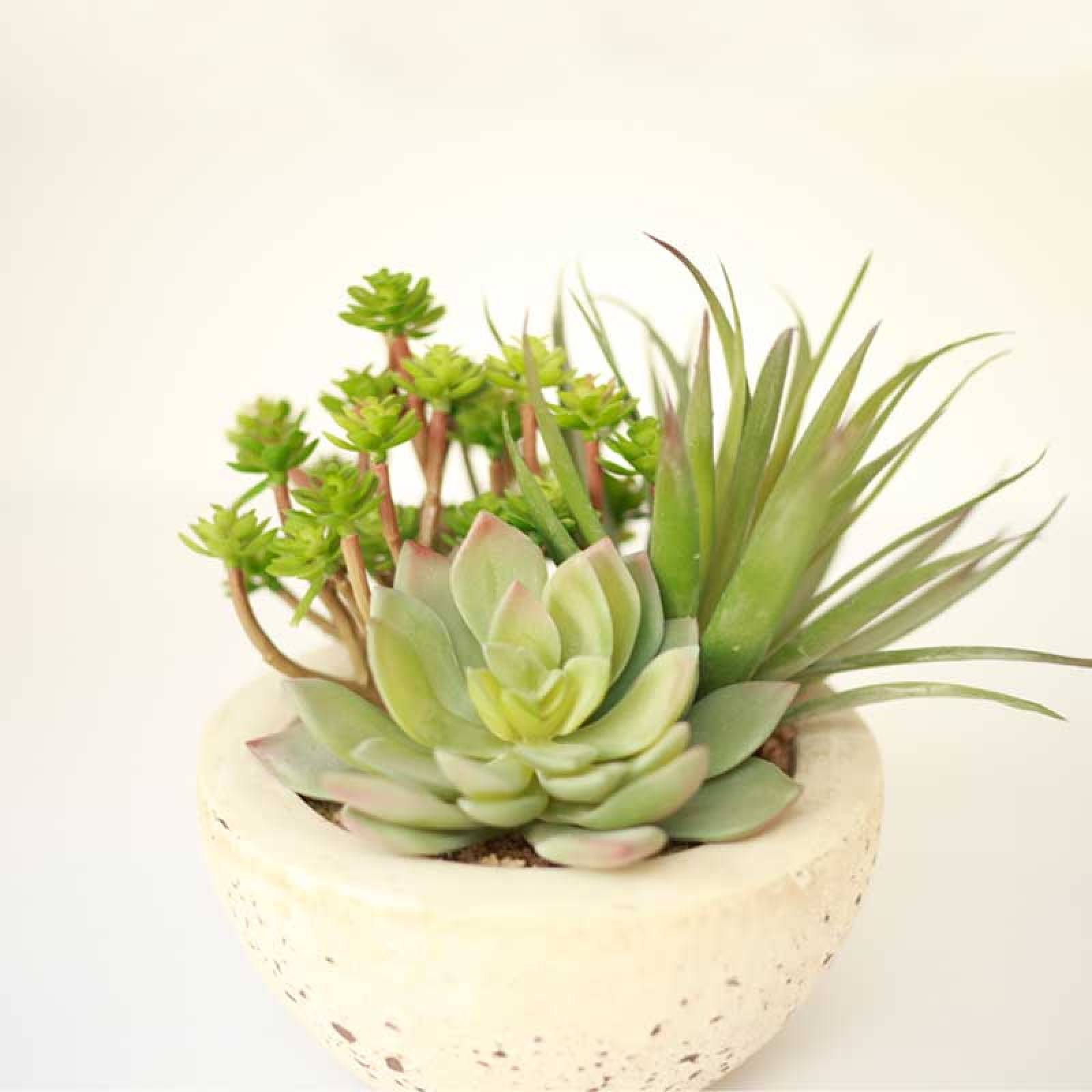 Assorted Faux Green Succulents Arranged In Grey Cement Bowl