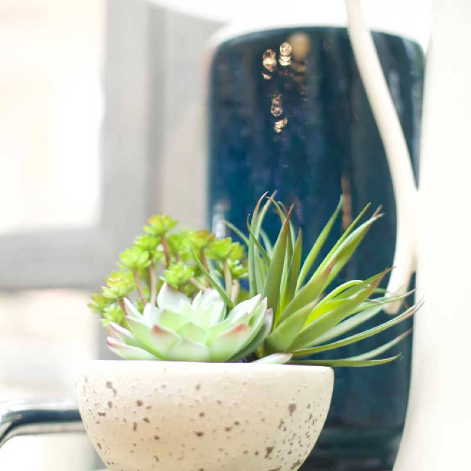 Artificial Succulents In Grey Cement Bowl