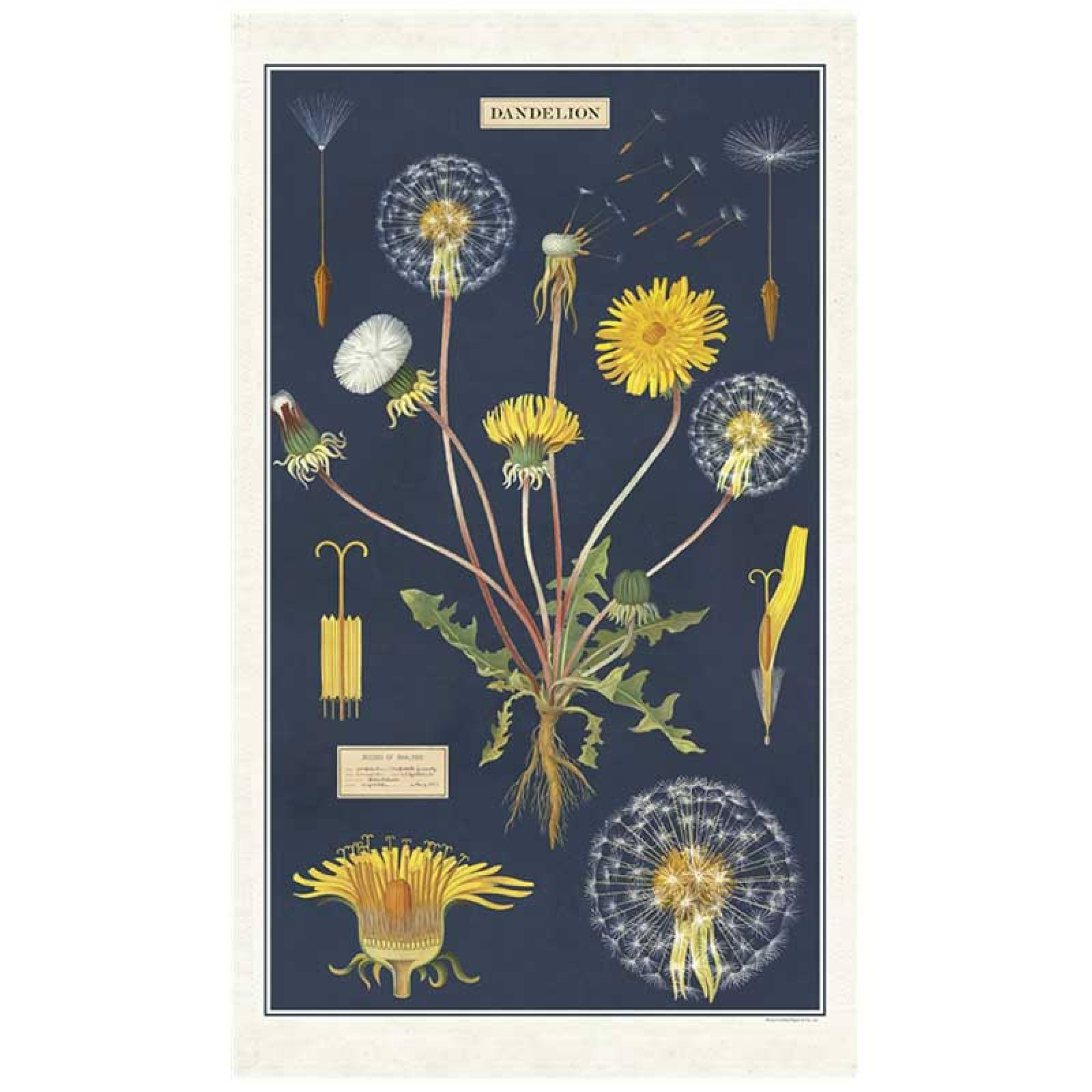 Dandelion Tea Towel With Gift Bag