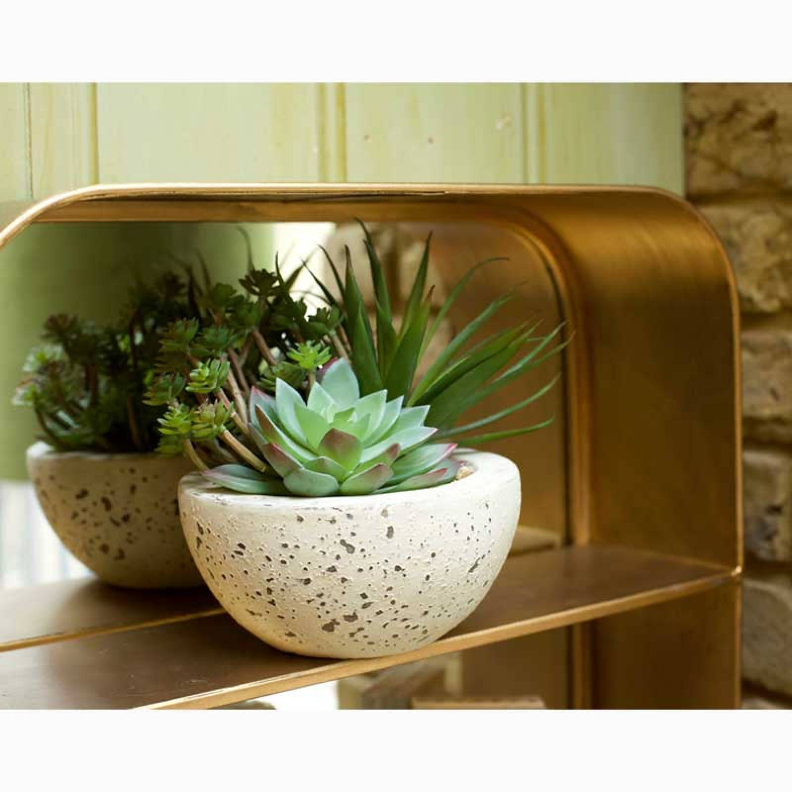 Artificial Succulents In Grey Cement Bowl thumbnails