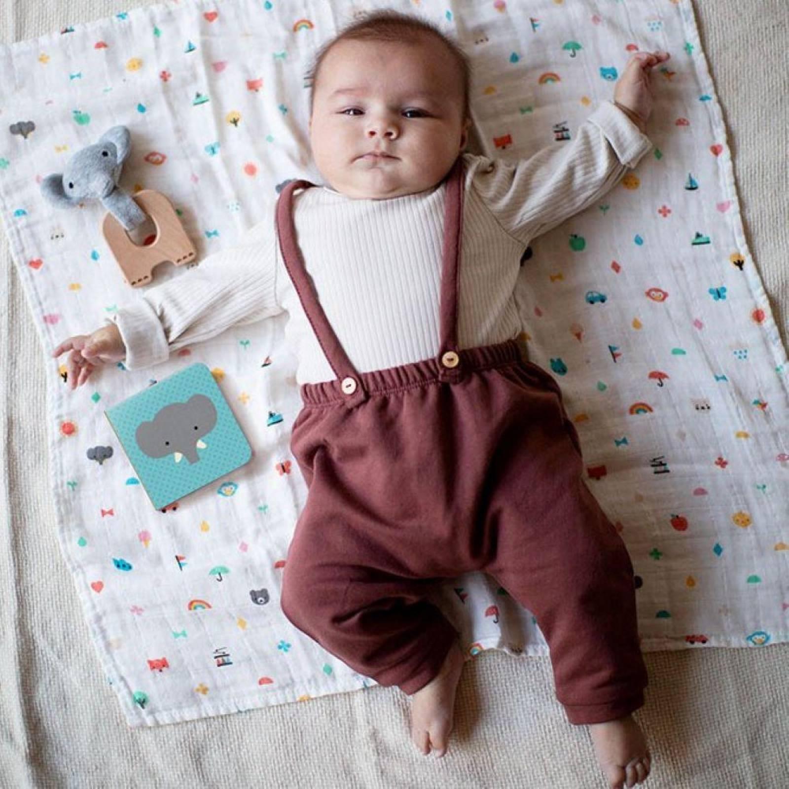 Little Elephant Baby Gift Set 0+