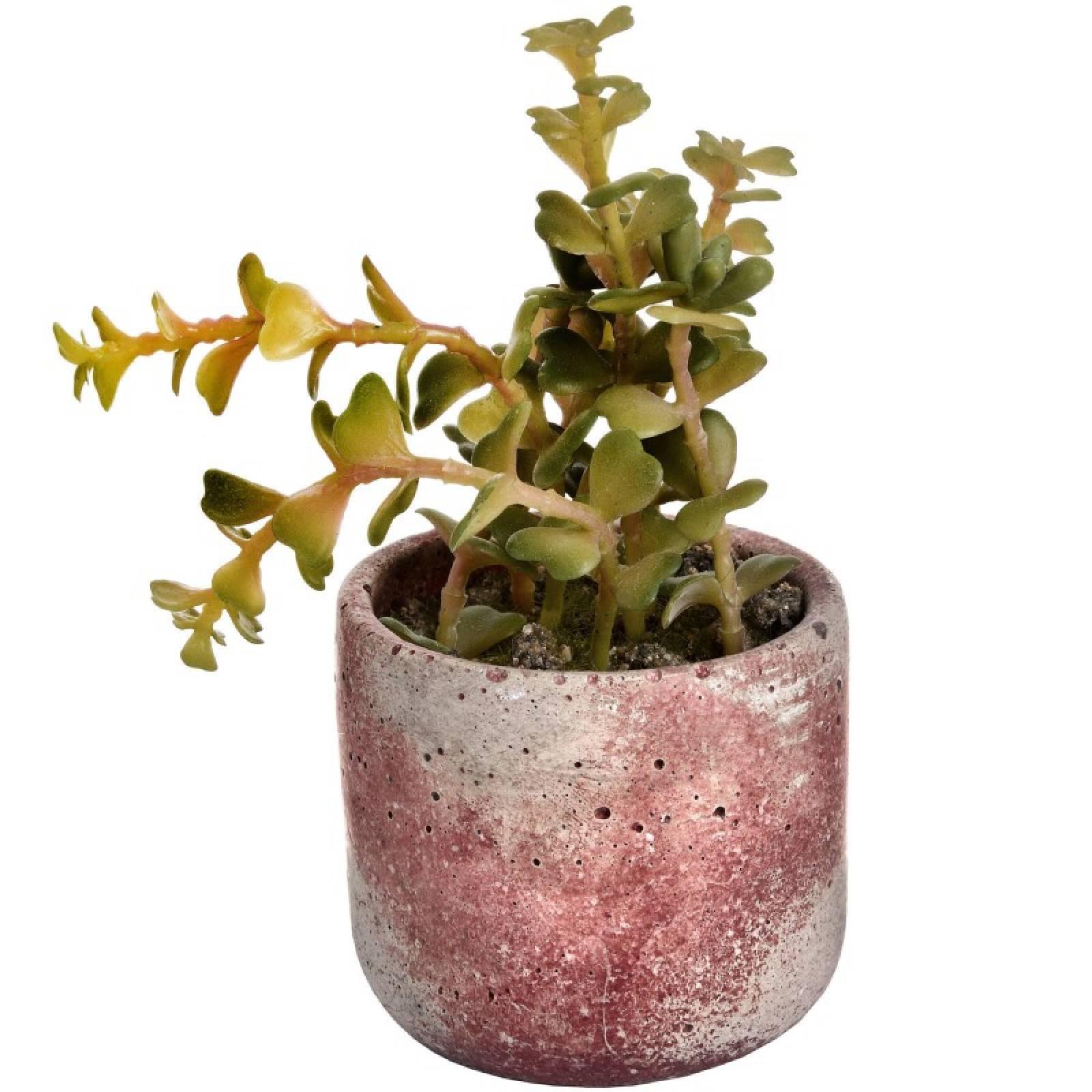 Miniature Potted Artificial Succulent thumbnails