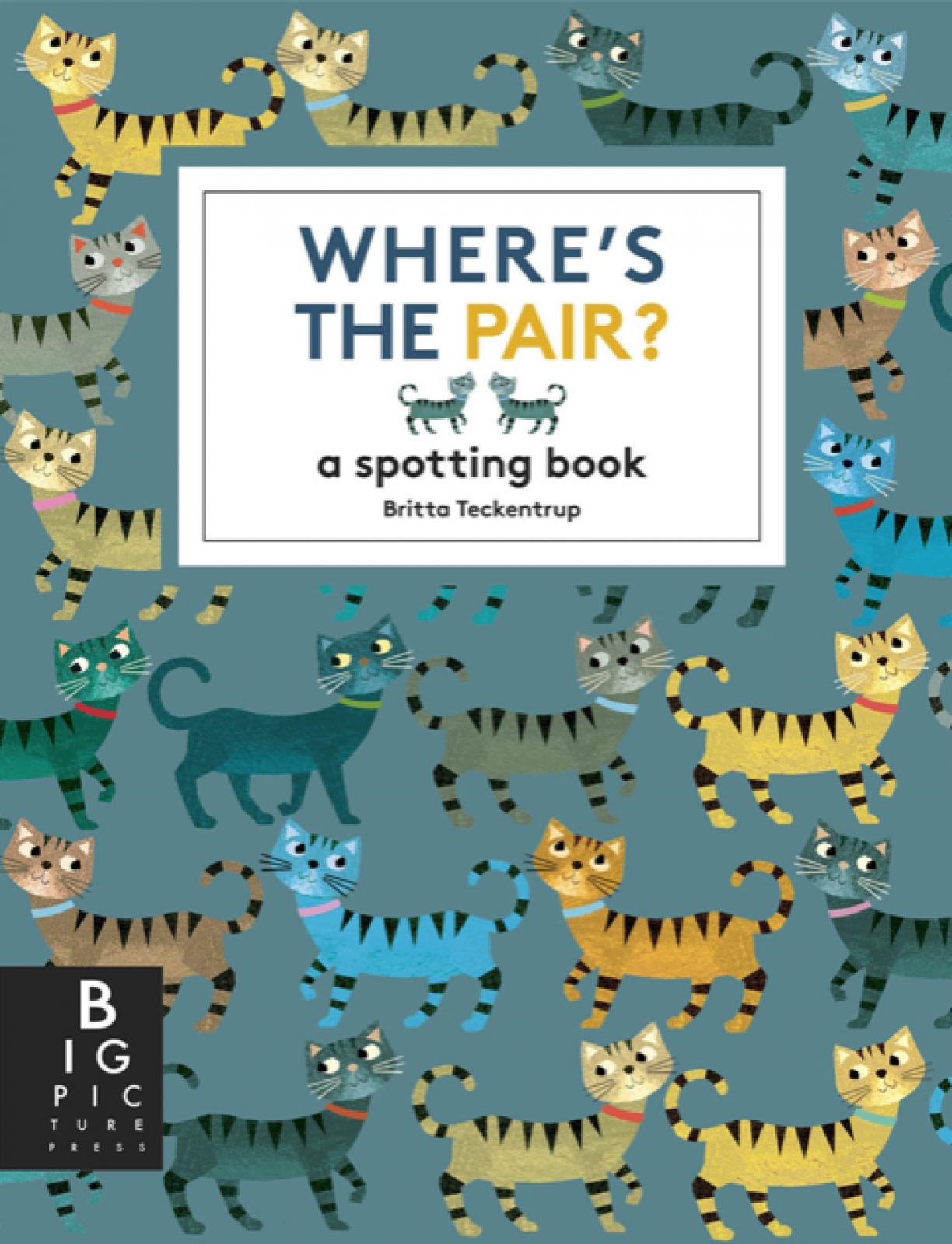 Where's The Pair? A Spotting Book By Britta Teckentrup Hardback
