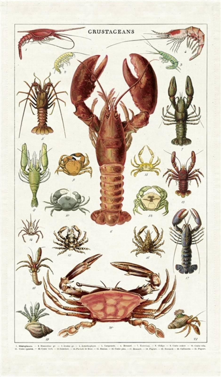 Crustacean Lobster Cotton Tea Towel With Gift Bag