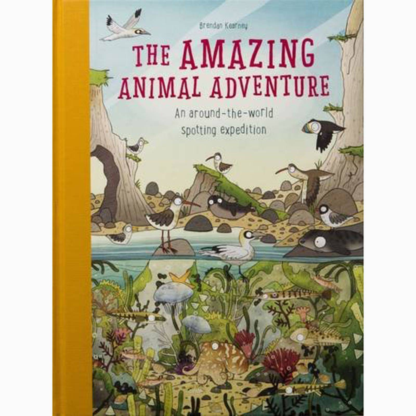 The Amazing Animal Adventure - Hardback Book