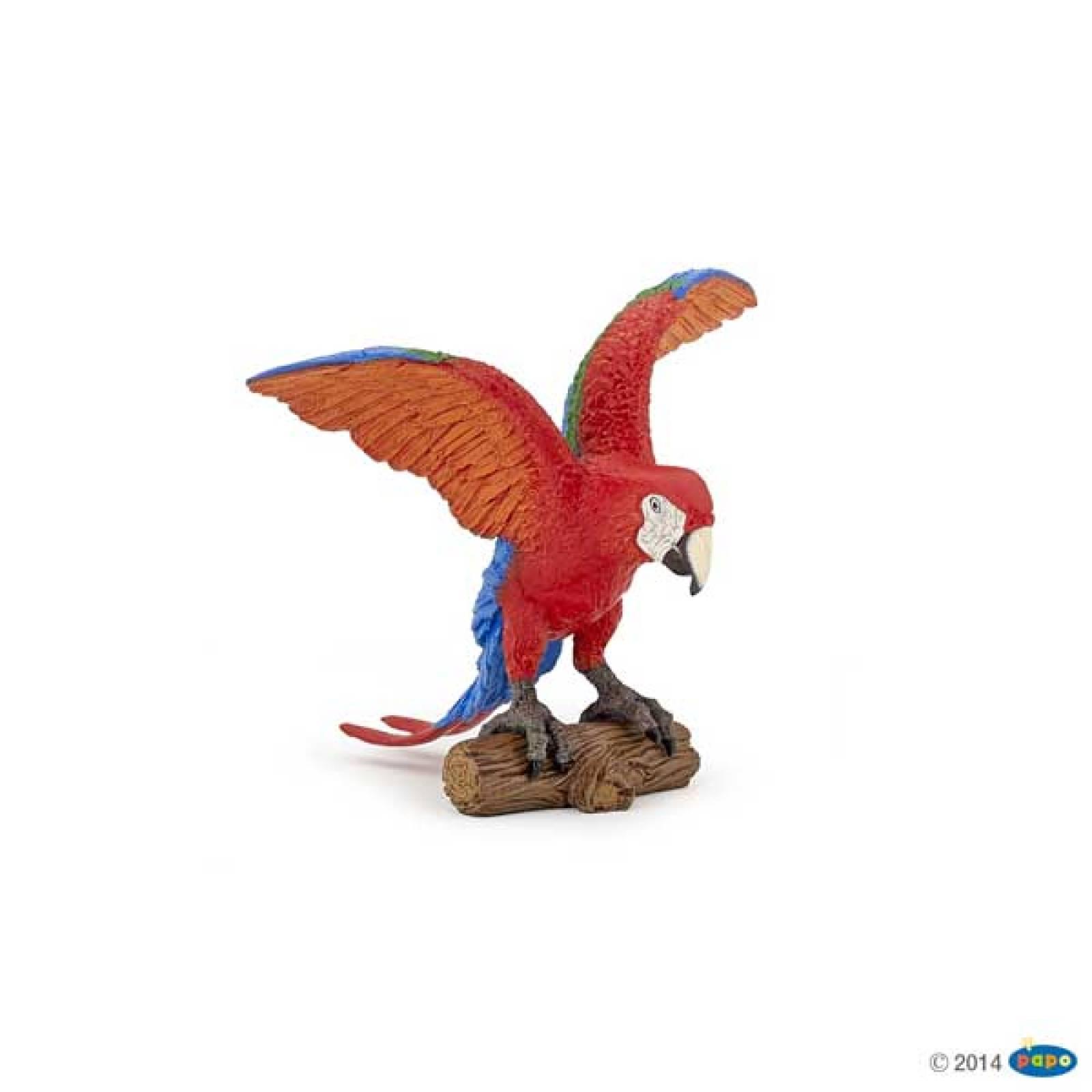 Ara Parrot PAPO WILD ANIMAL