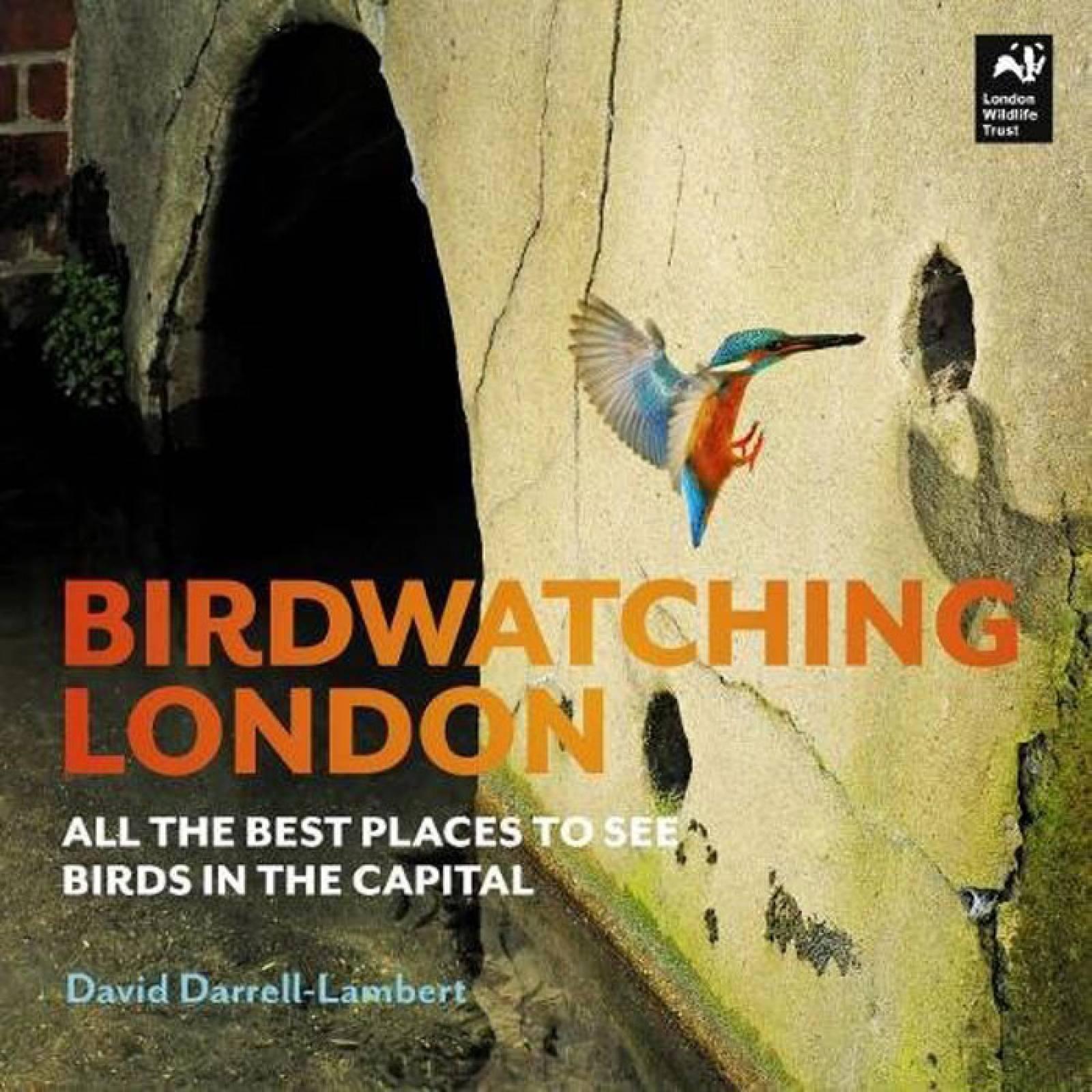 Birdwatching London - Paperback Book