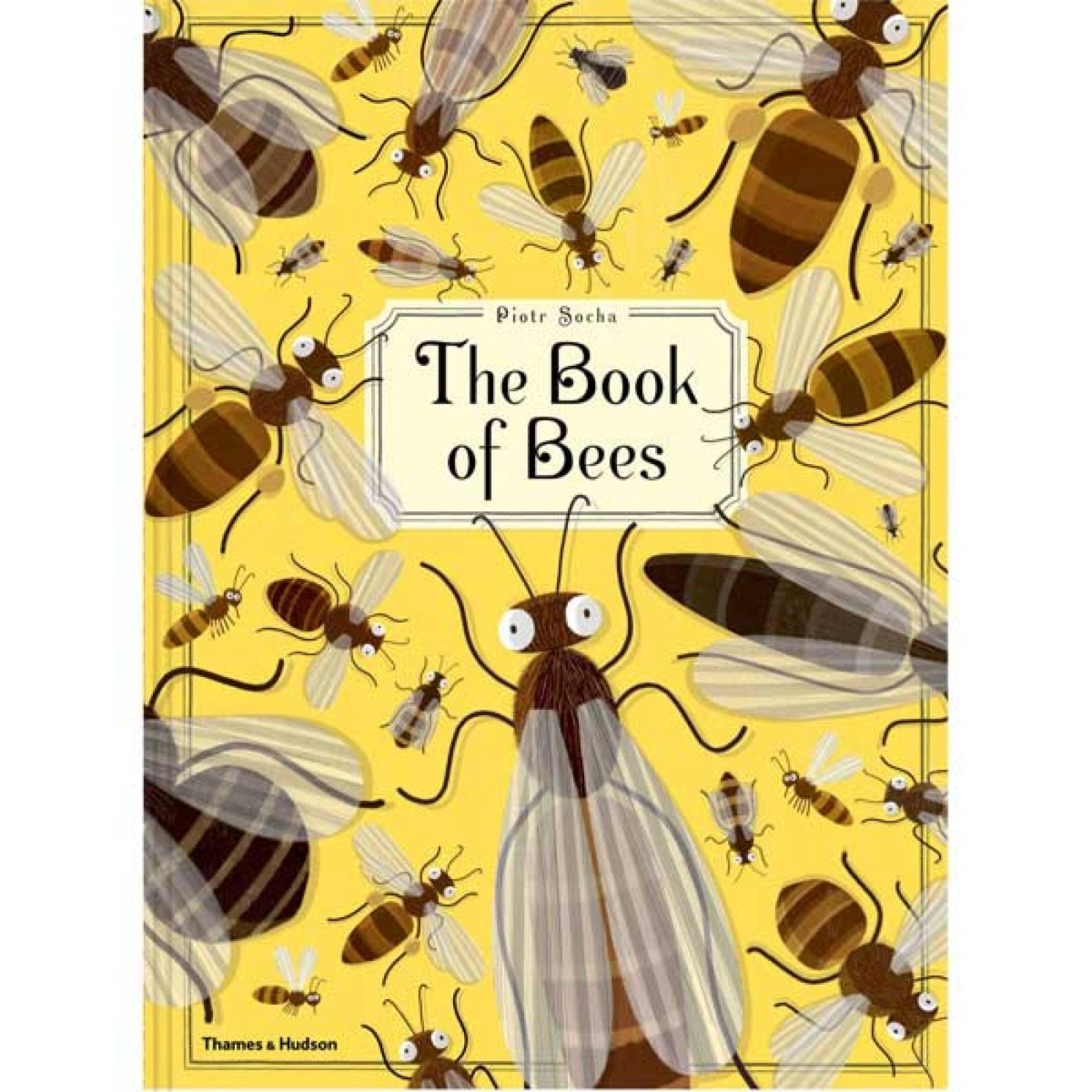 The Book Of Bees By Piotr Socha Hardback Book