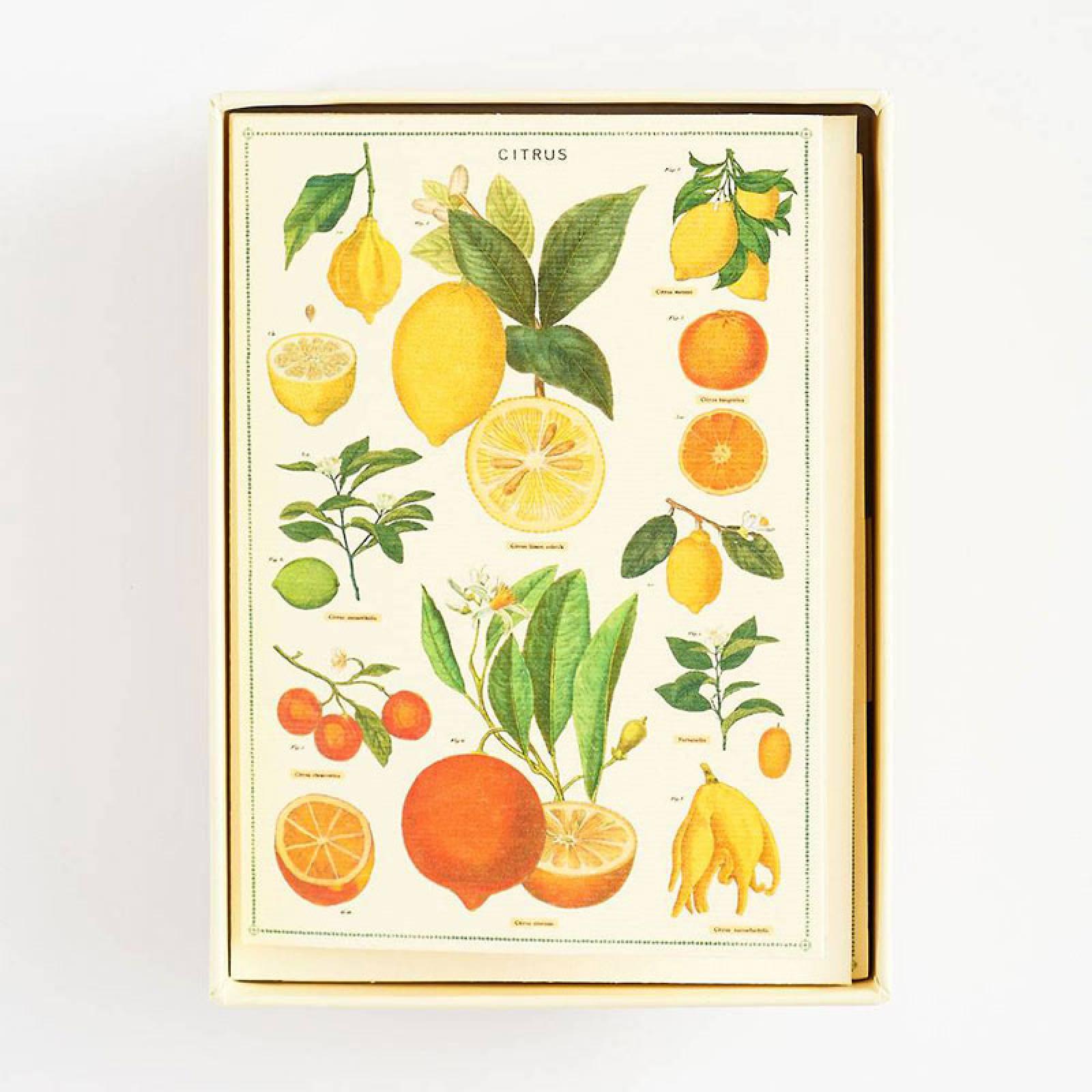 Box Of 8 Notecards And Envelopes - Jardin thumbnails