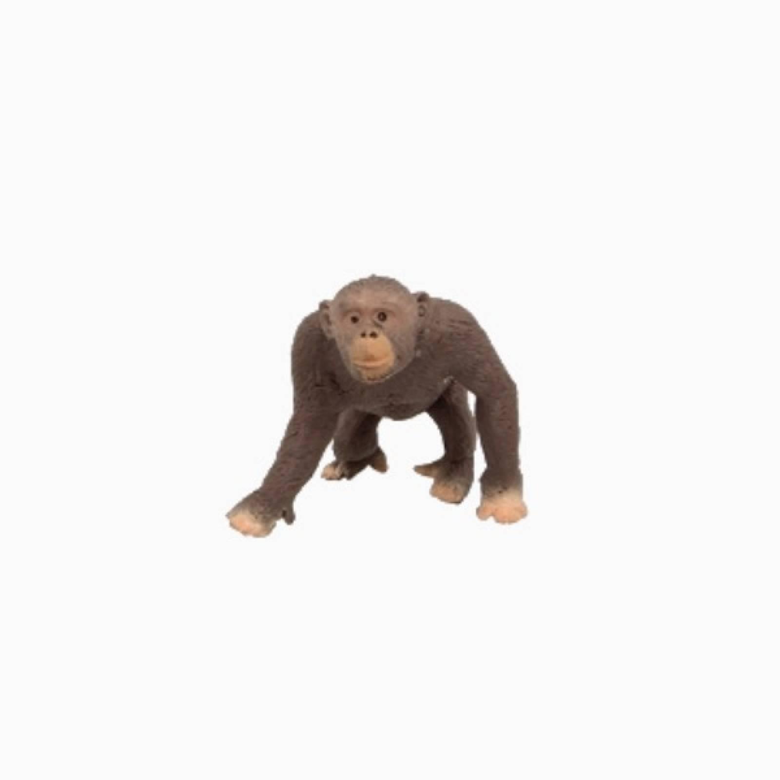 Chimpanzee Stretchy Beanie Animal Toy 3+