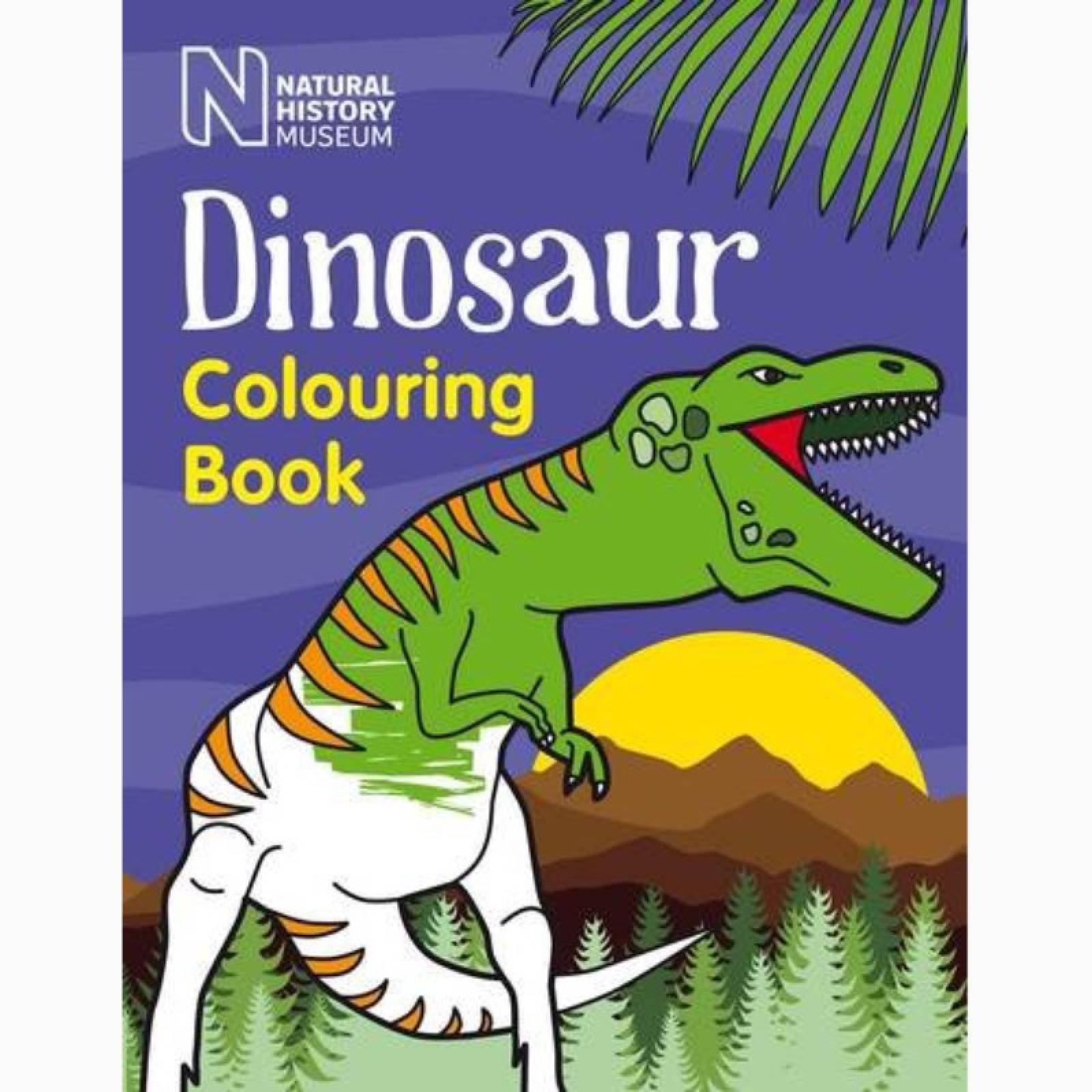 Dinosaur Colouring Book (NHM) - Paperback Book
