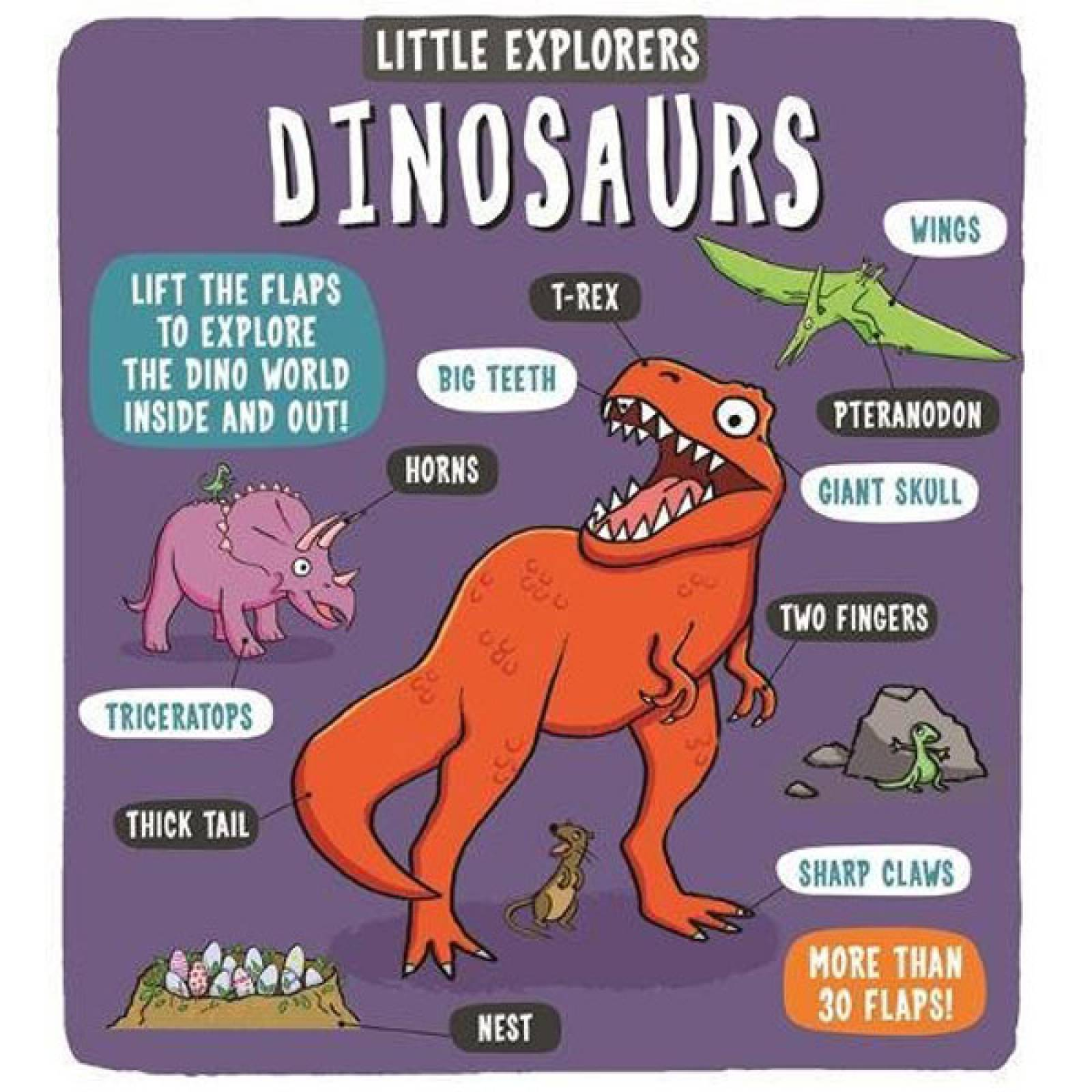 Little Explorers: Dinosaurs Lift The Flap Hardback Book