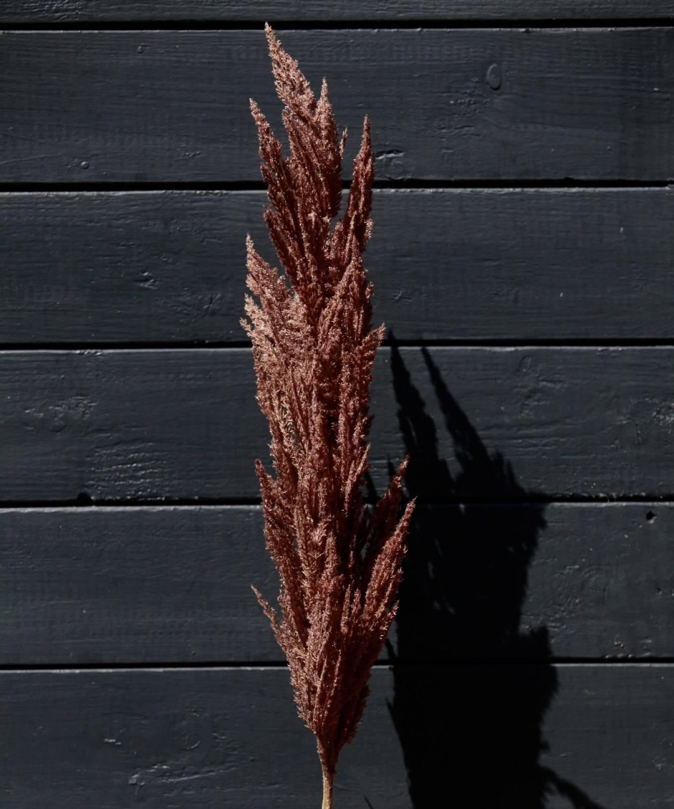 Faux Brown Pampas Grass Spray