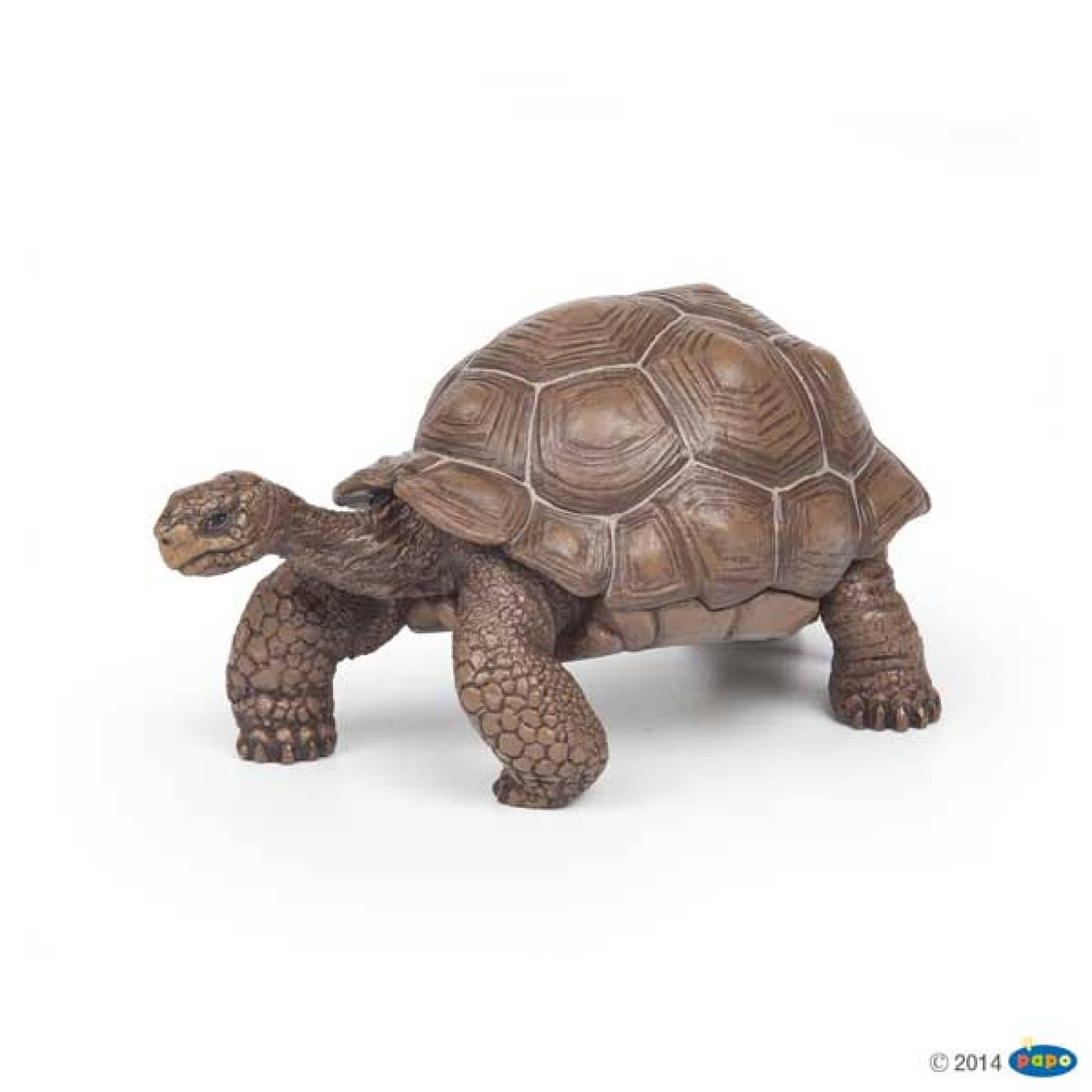 Galapagos Tortoise PAPO WILD ANIMAL