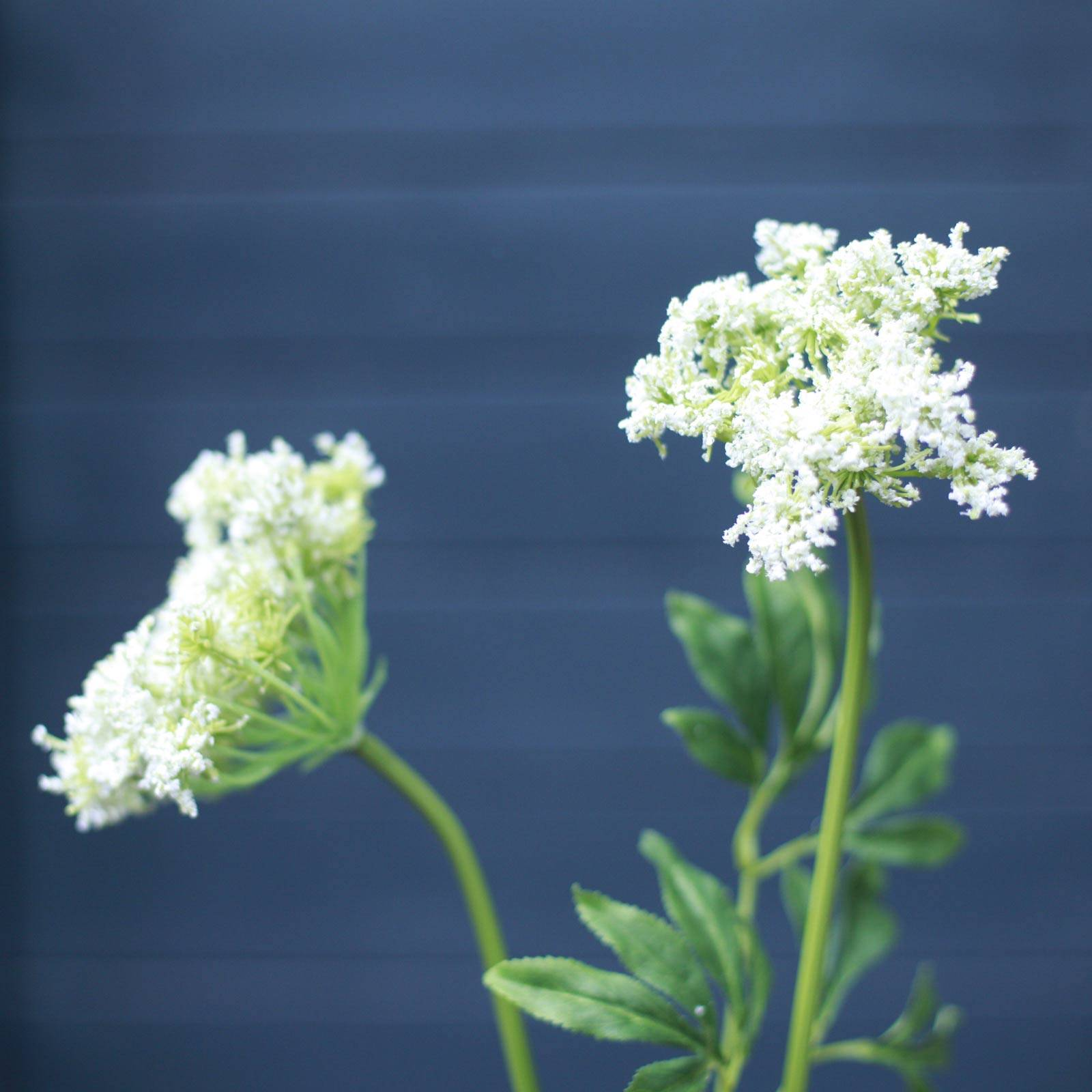 Faux White Queen Anne's Lace Flower Spray