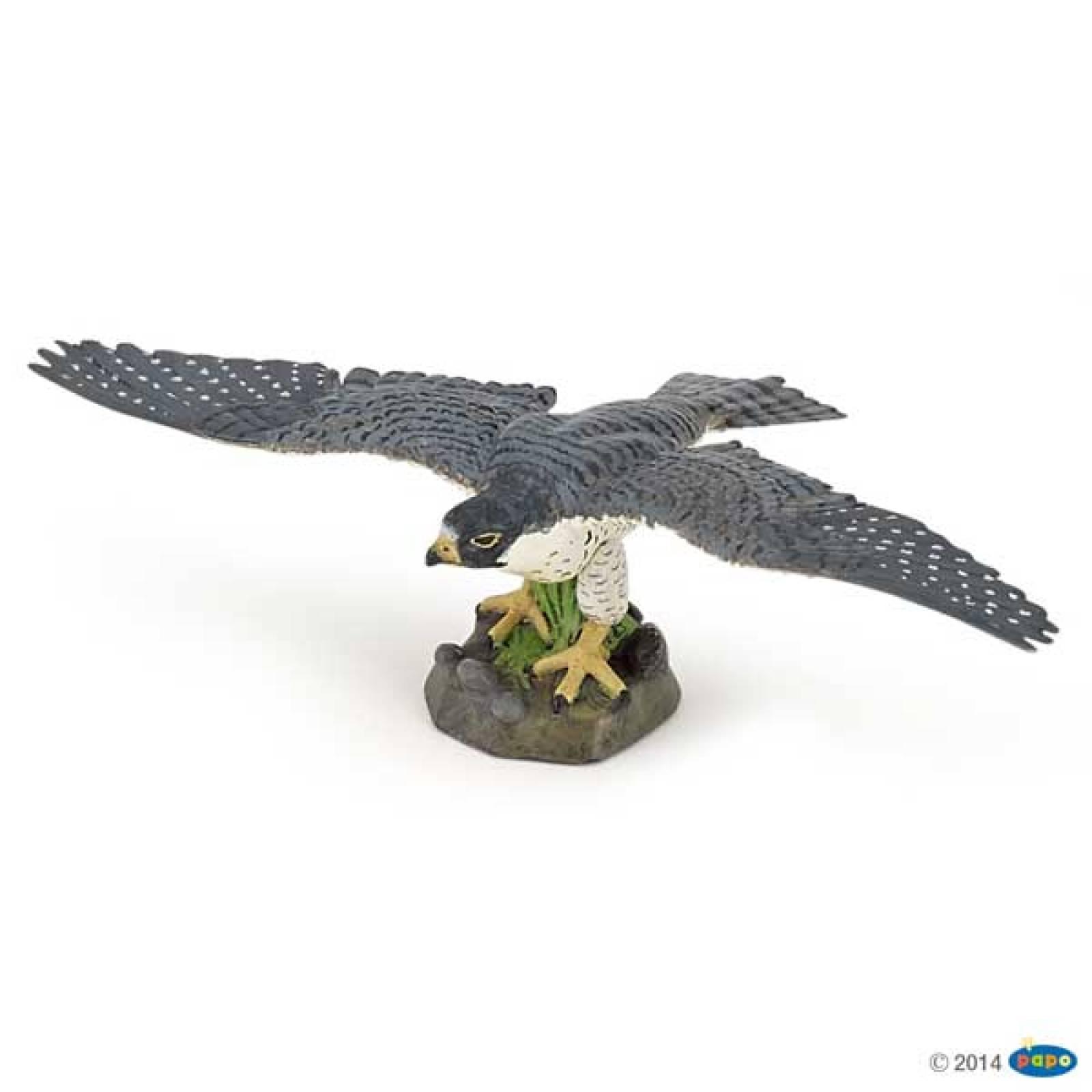 Hawk PAPO WILD ANIMAL