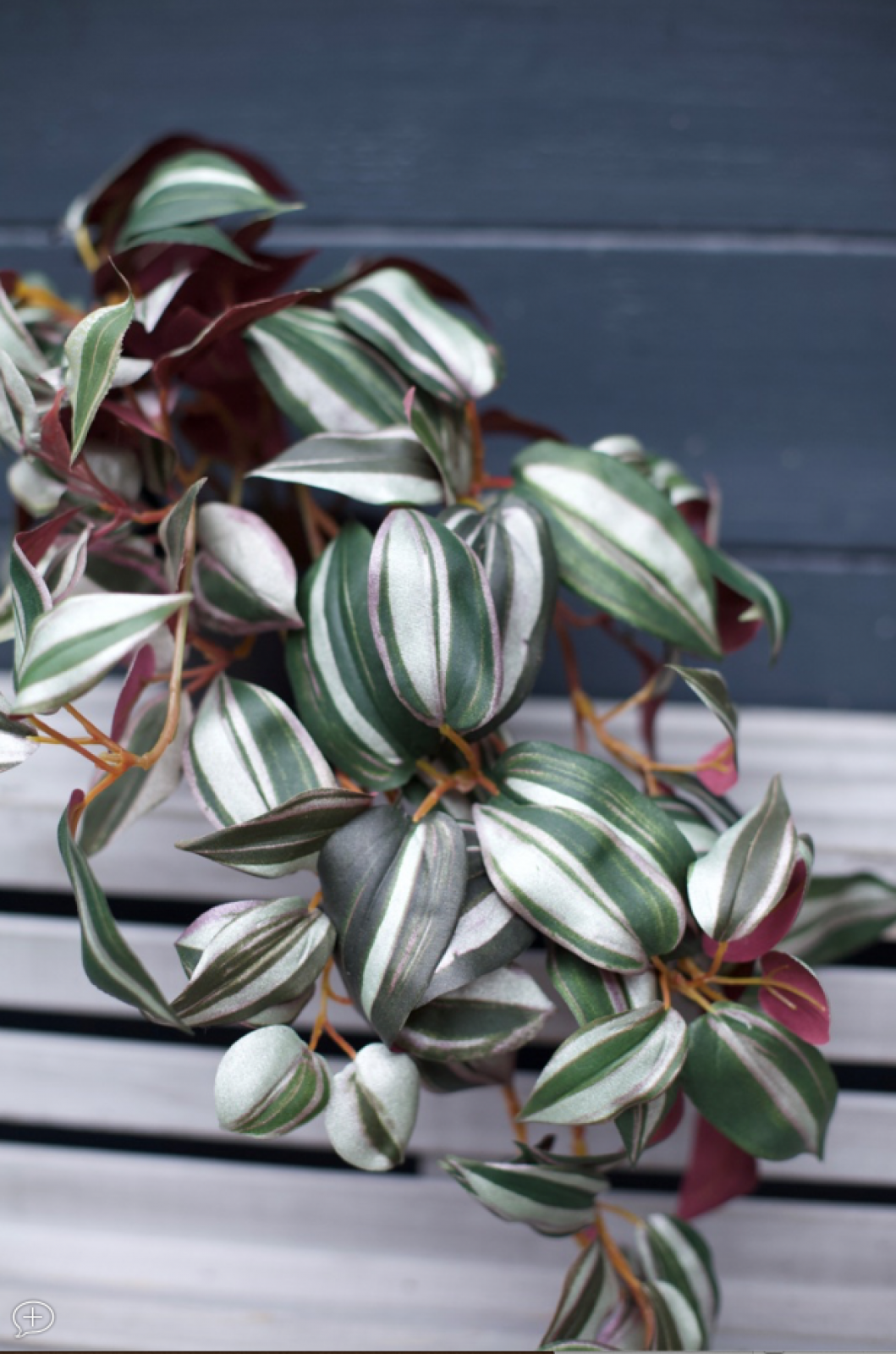 Faux Wandering Trailing Plant WIth Green & Purple Leaves H:24cm thumbnails