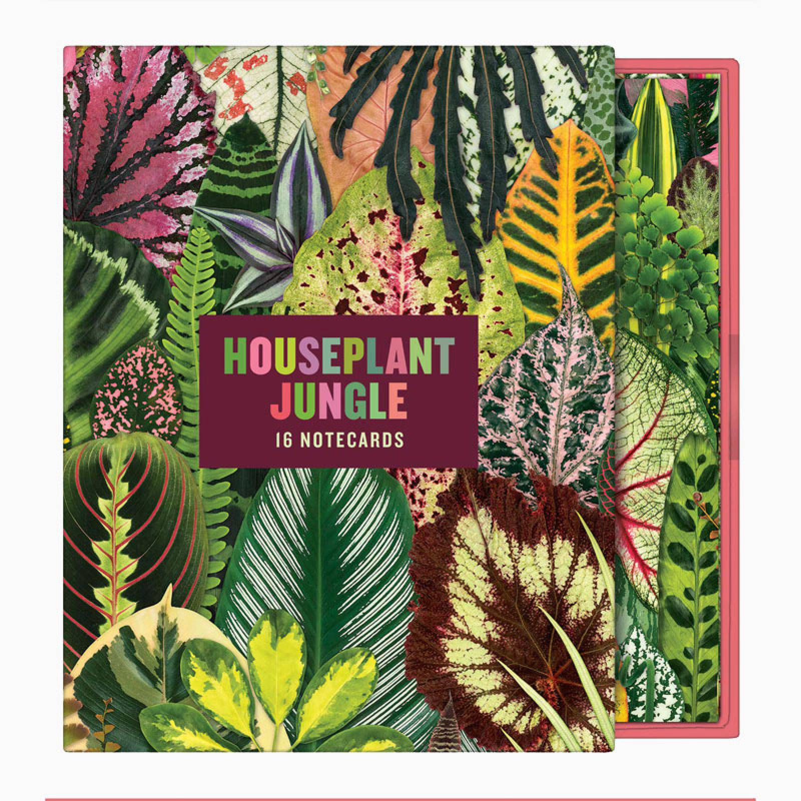 Houseplant Jungle Greeting Set Of Notecards