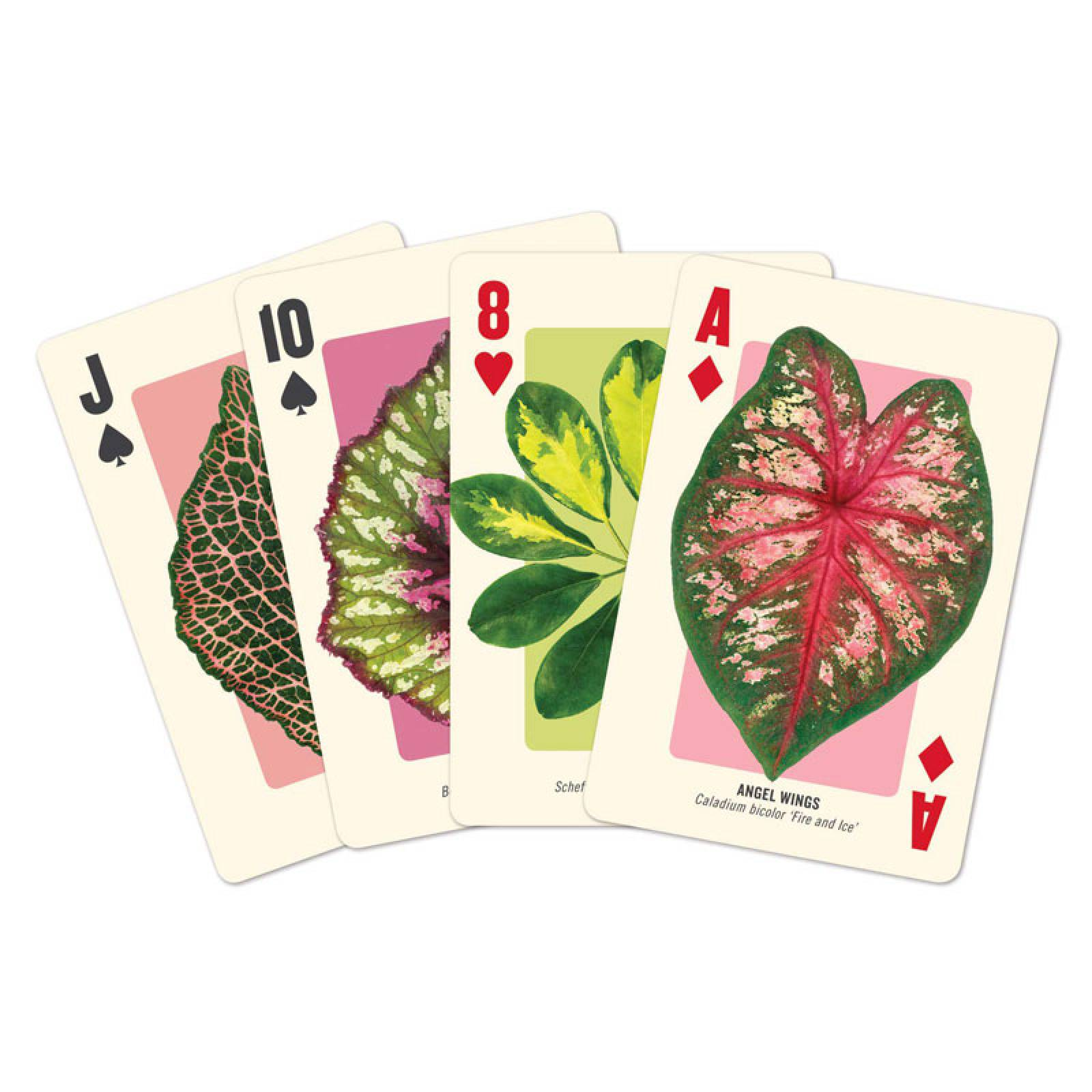Houseplant Jungle Playing Card Set thumbnails