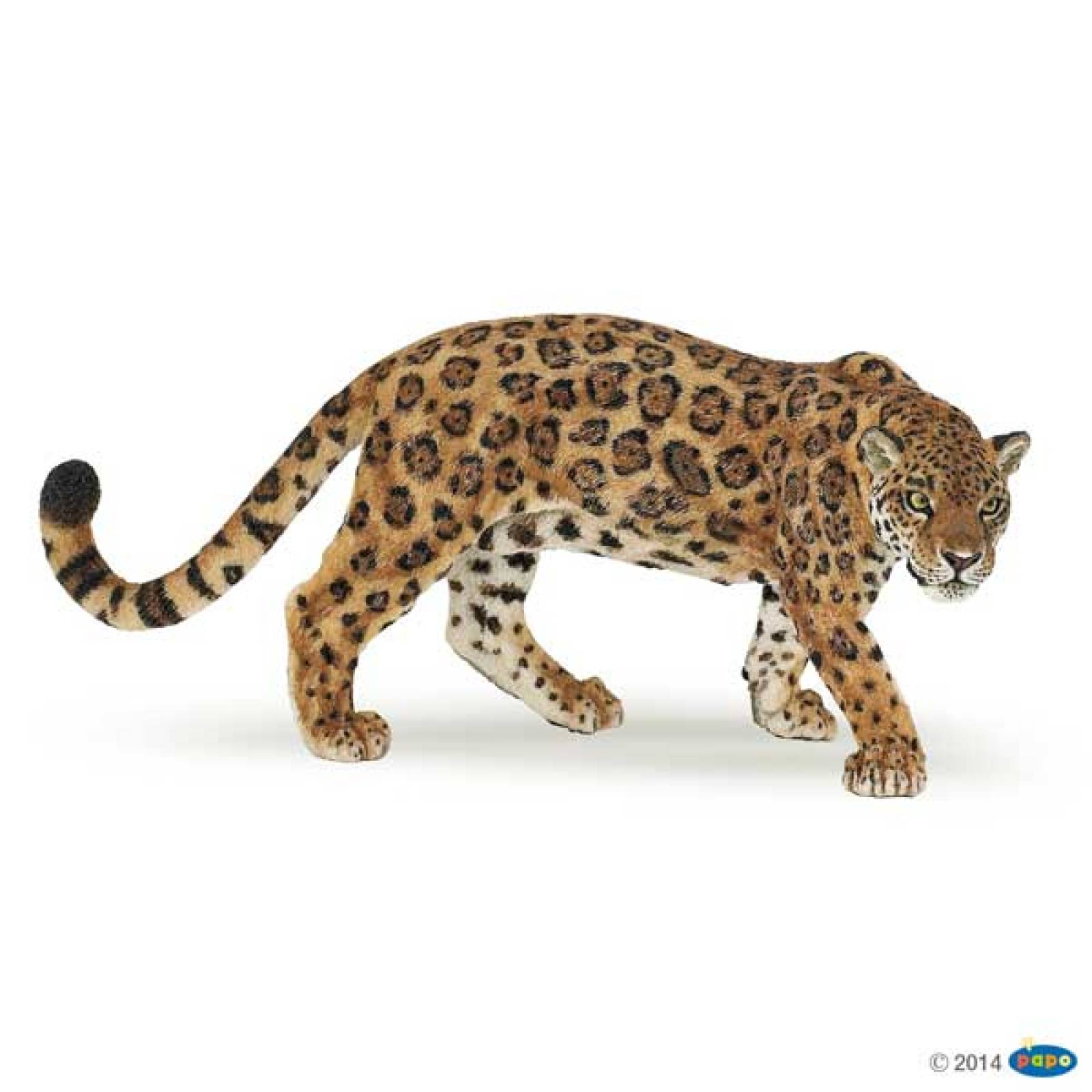 Jaguar PAPO WILD ANIMAL