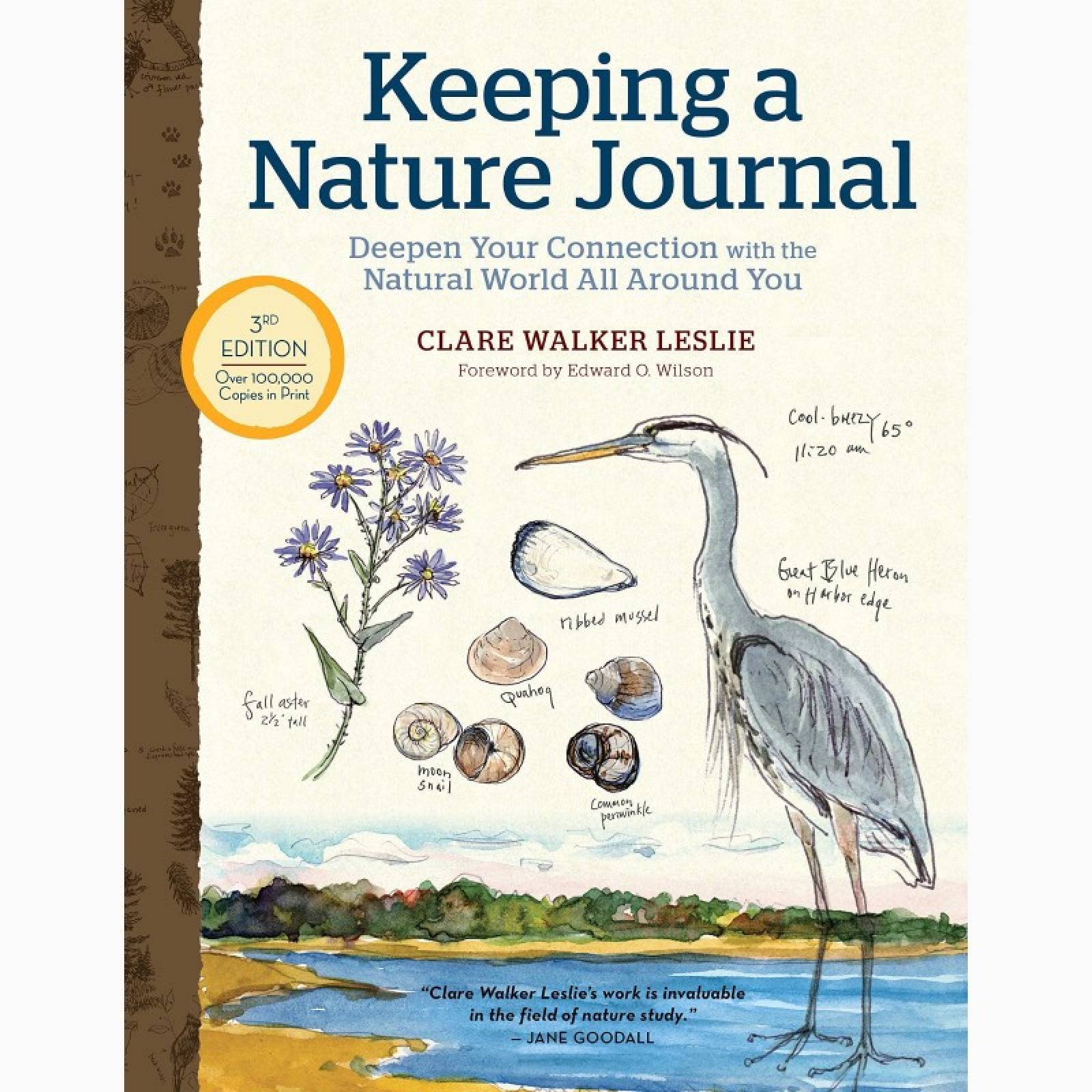 Keeping A Nature Journal - Paperback Book