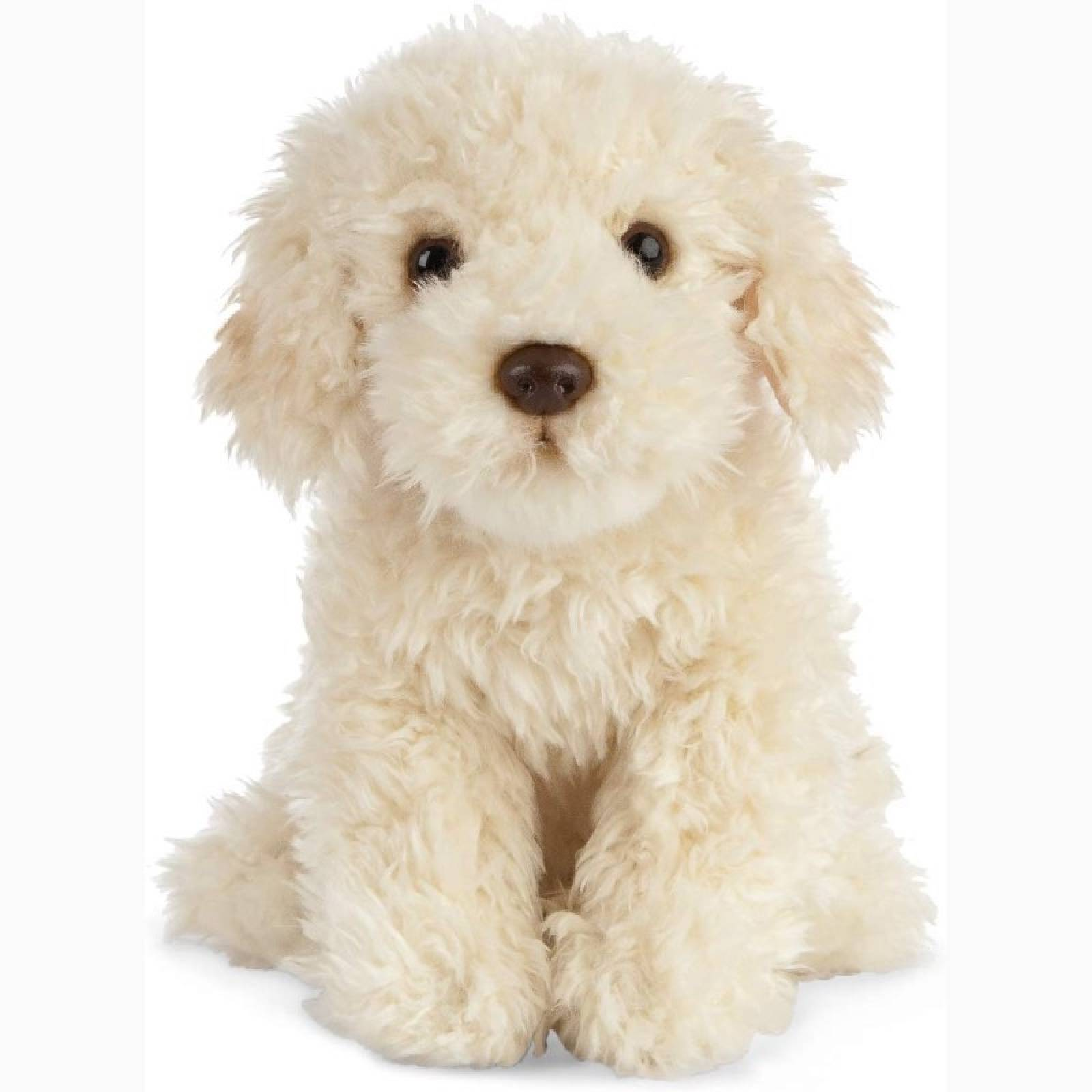 Labradoodle Puppy Soft Toy 0+