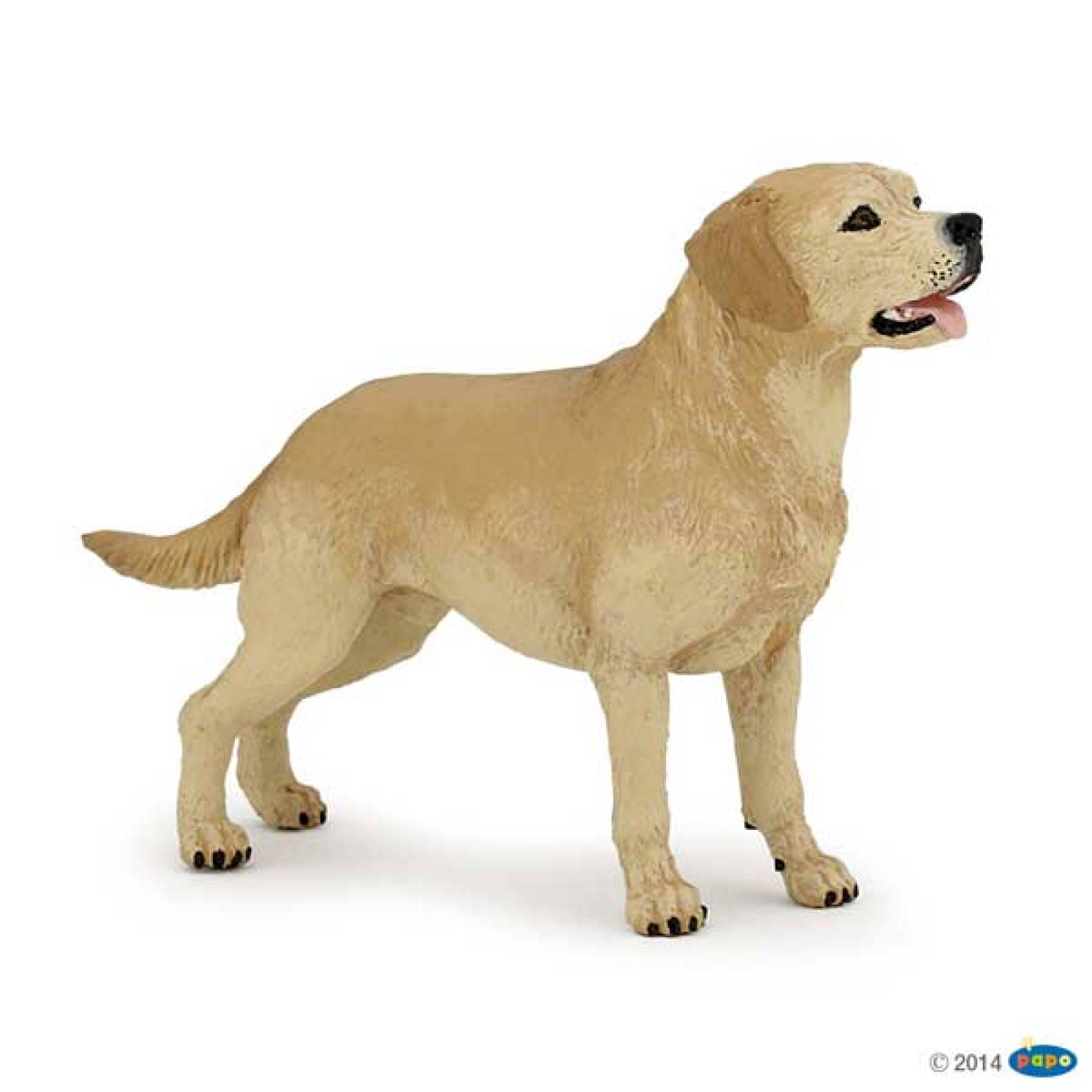 Labrador Dog PAPO ANIMAL