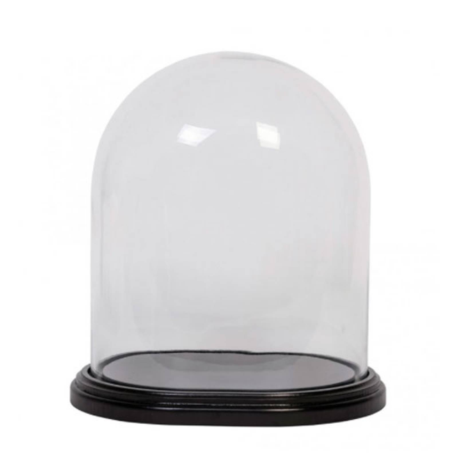Large Oval Glass Dome And Base thumbnails