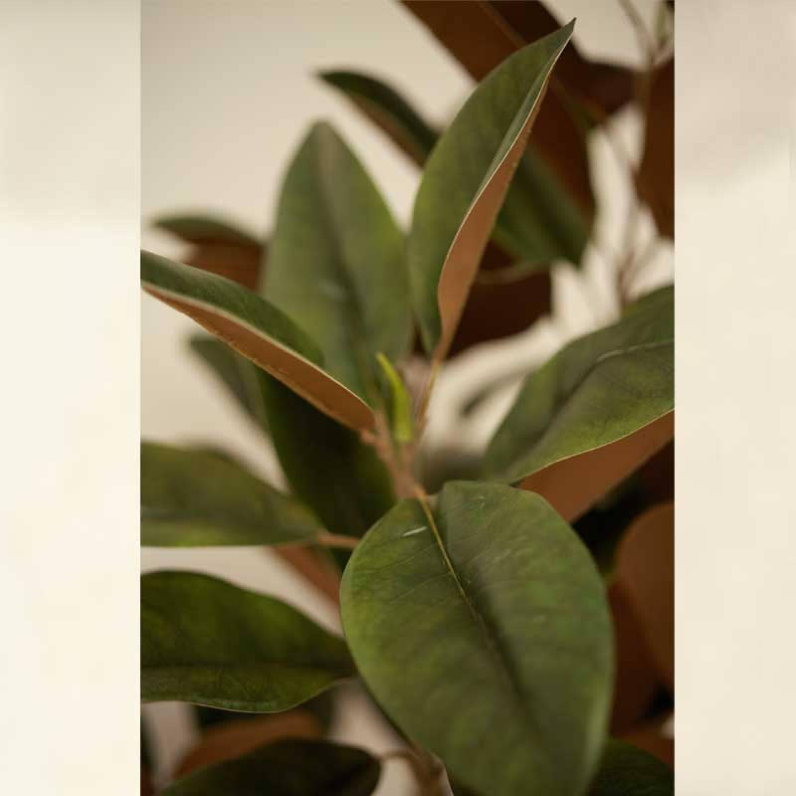 Large Faux Magnolia Tree Plant thumbnails