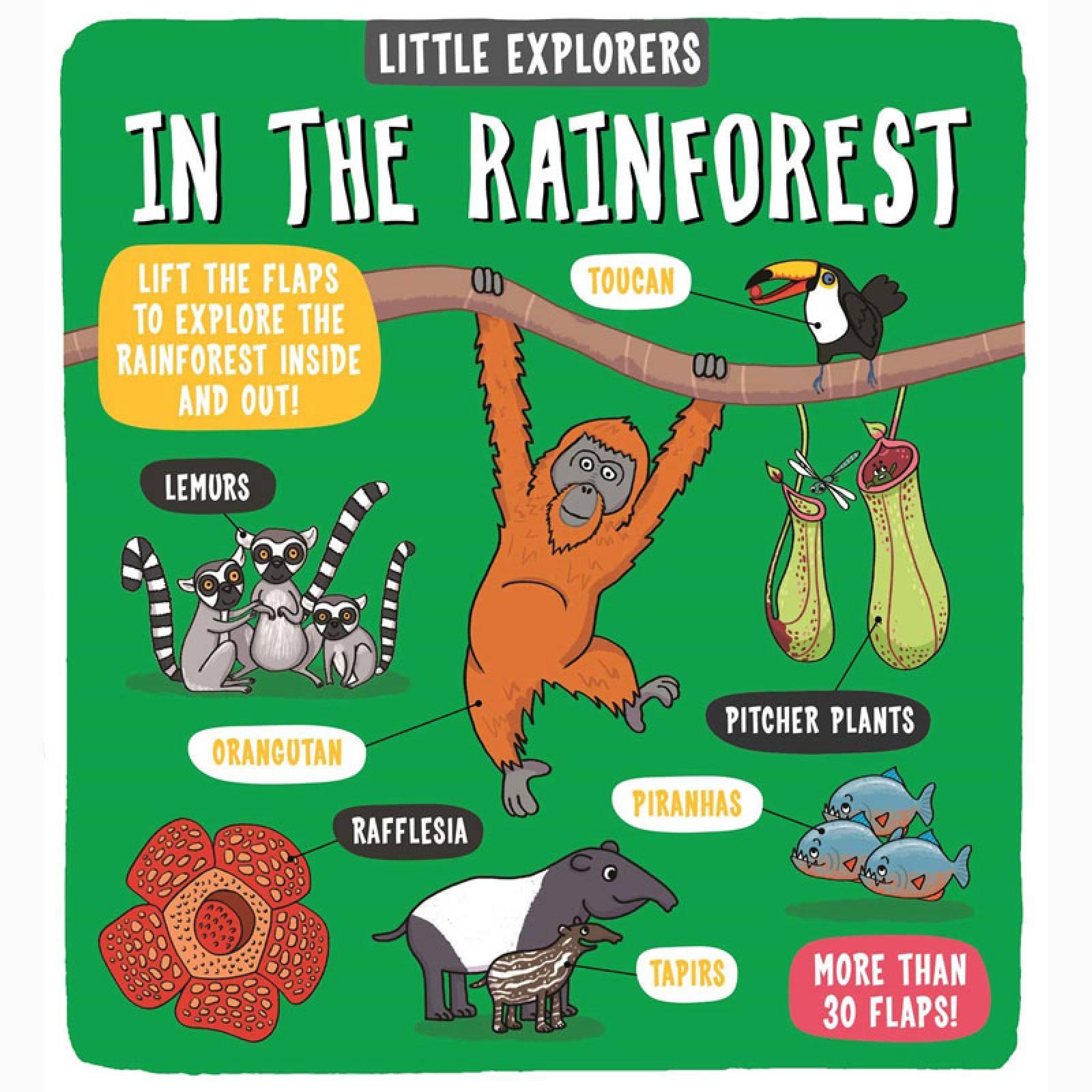 Little Explorers: In The Rainforest - Hardback Book