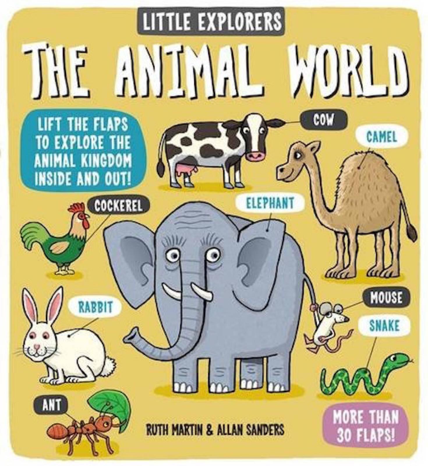 Little Explorers: The Animal World Hardback Book