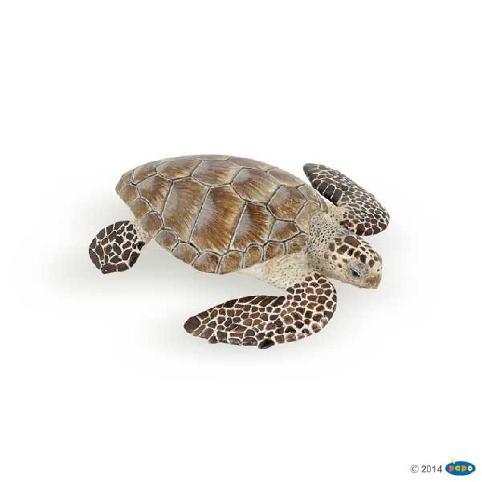 Loggerhead Turtle PAPO WILD ANIMAL