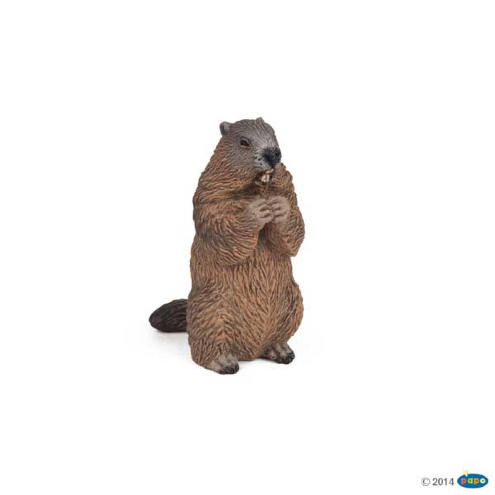 Marmot PAPO WILD ANIMAL