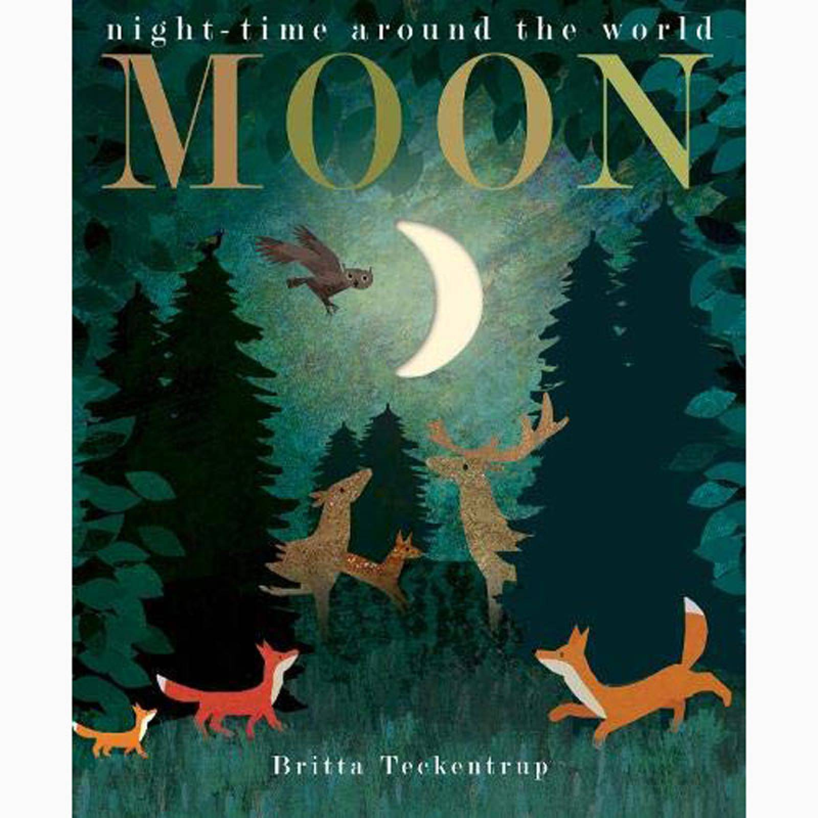 Moon - Paperback Book