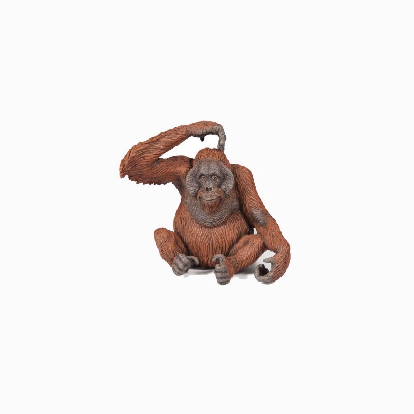 Orangutan - Papo Wild Animal Figure