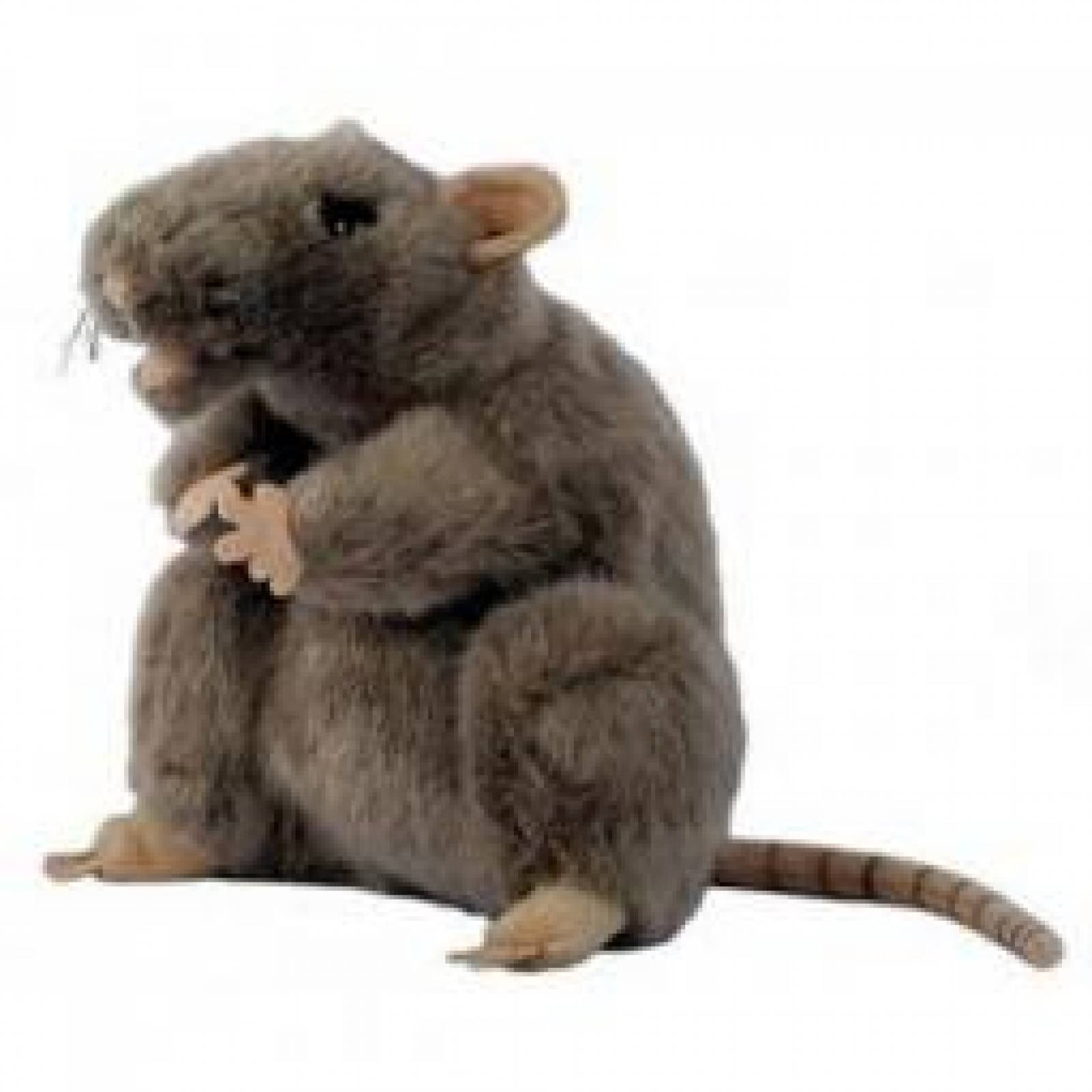 GREY RAT Plump Glove Puppet European Wildlife