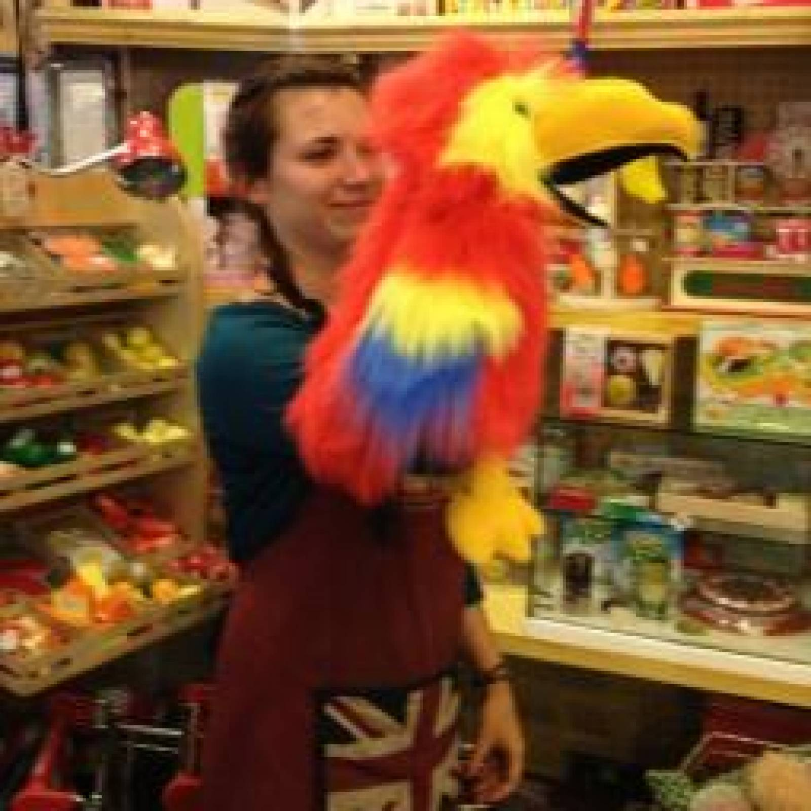 Scarlet Macaw Parrot Long Sleeved Glove Puppet Bird With Sound thumbnails