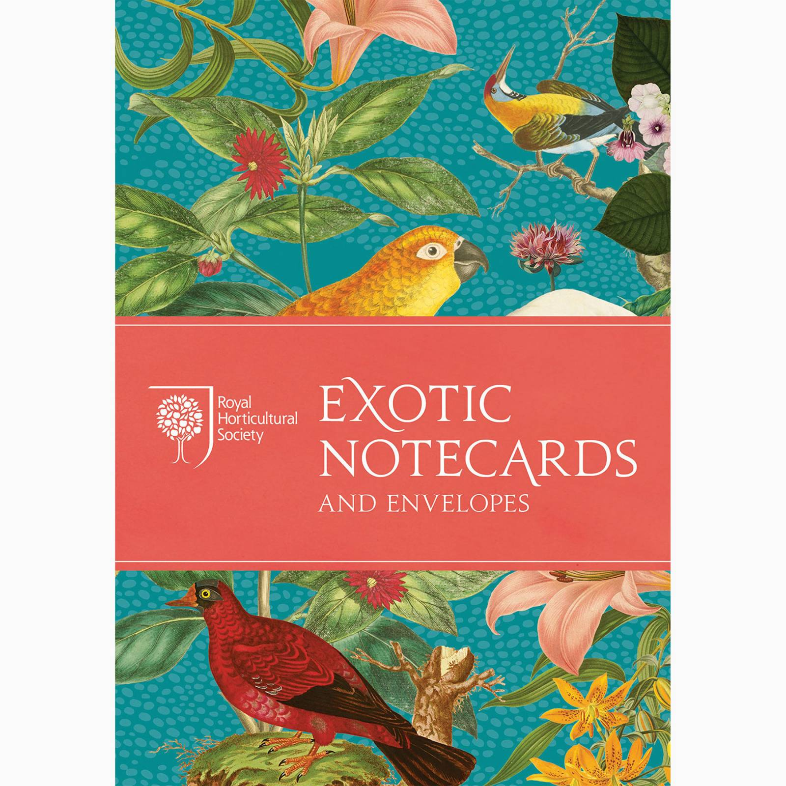 RHS Exotic Notecards - Box Set Of 10 Notecards
