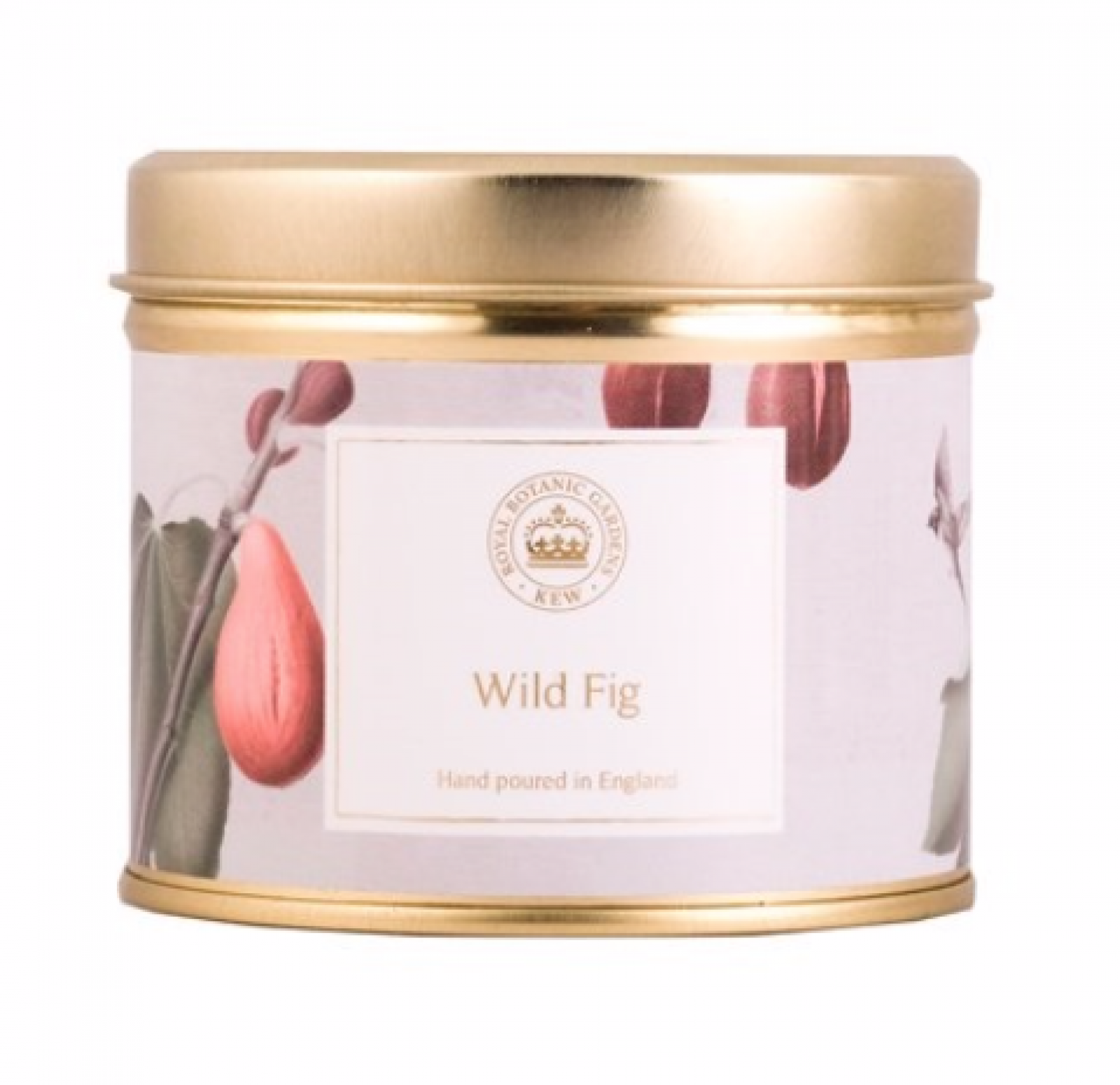 Wild Fig Kew Aromatics Candle In Tin 160g thumbnails