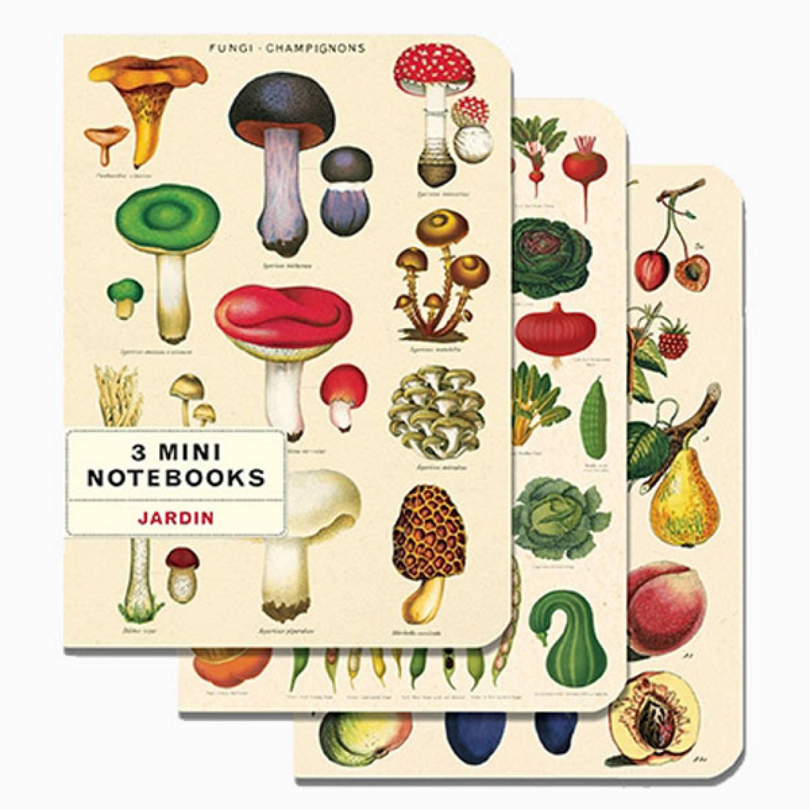 Set Of 3 Mini Notebooks - Le Jardin