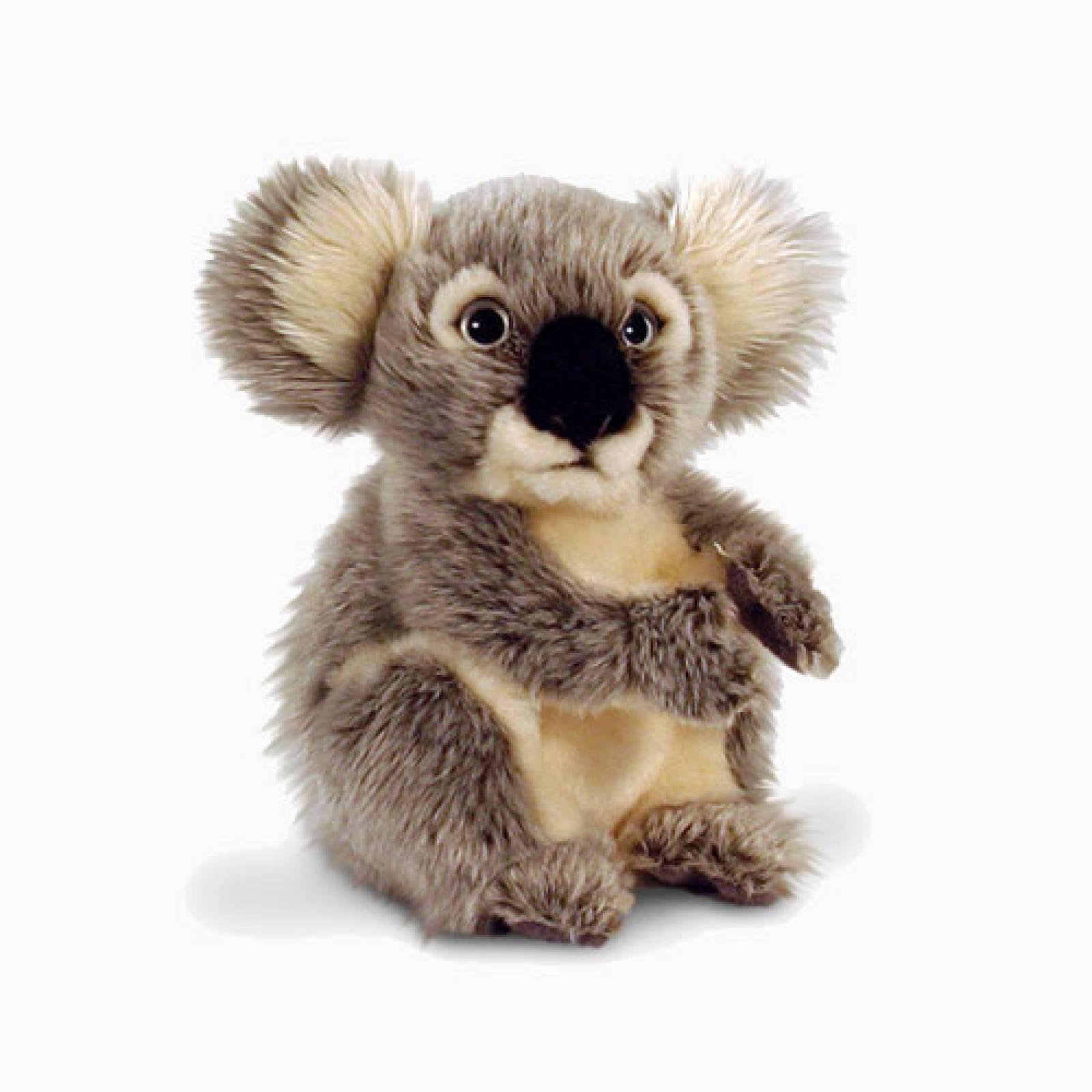 Small Koala Soft Toy 20cm