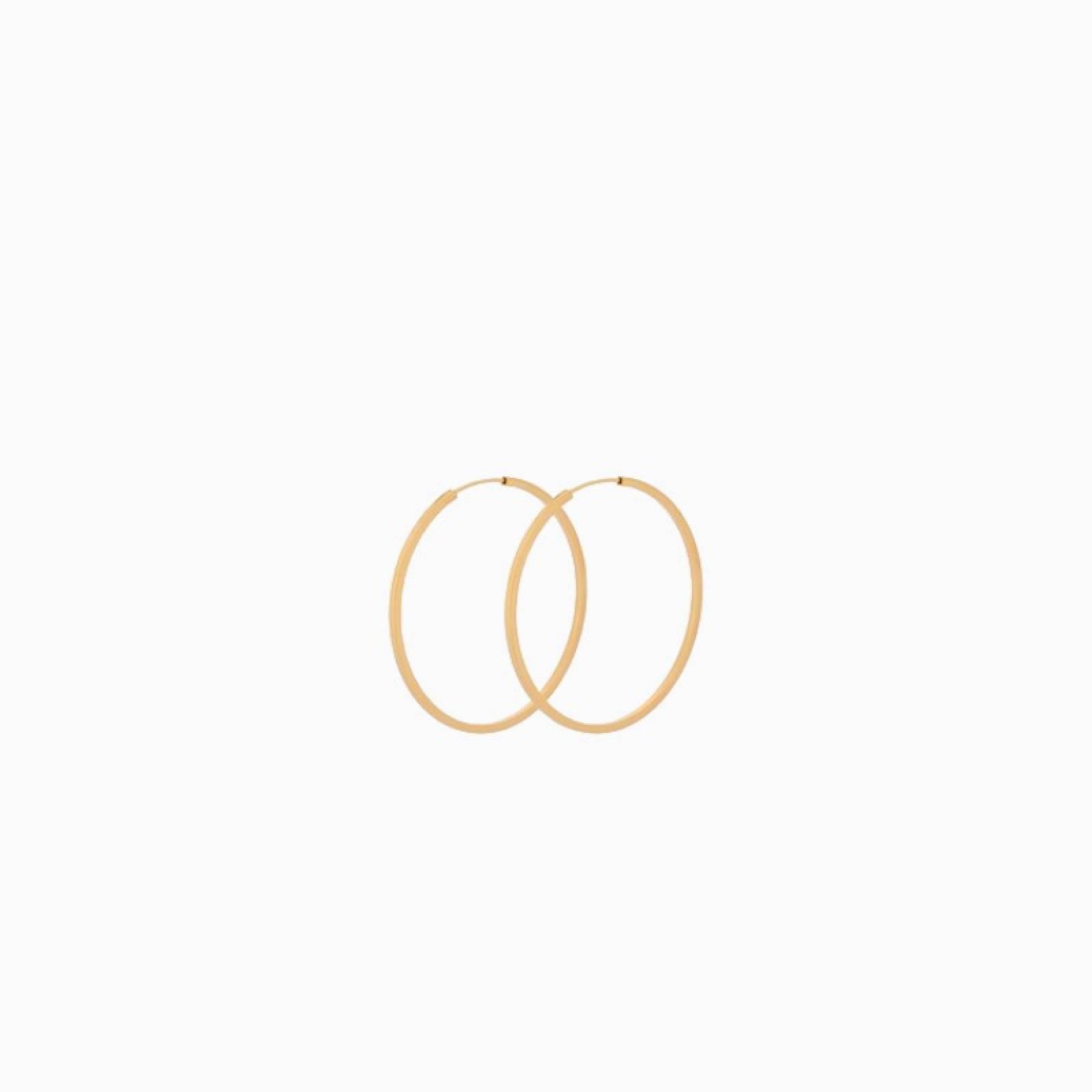 Small Orbit Hoop Earrings In Gold By Pernille Corydon