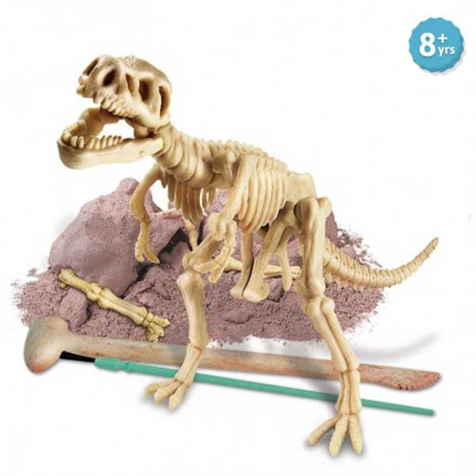 Dig A Tyrannosaurus-Rex Skeleton Kit - Kidz Labs 8+ thumbnails